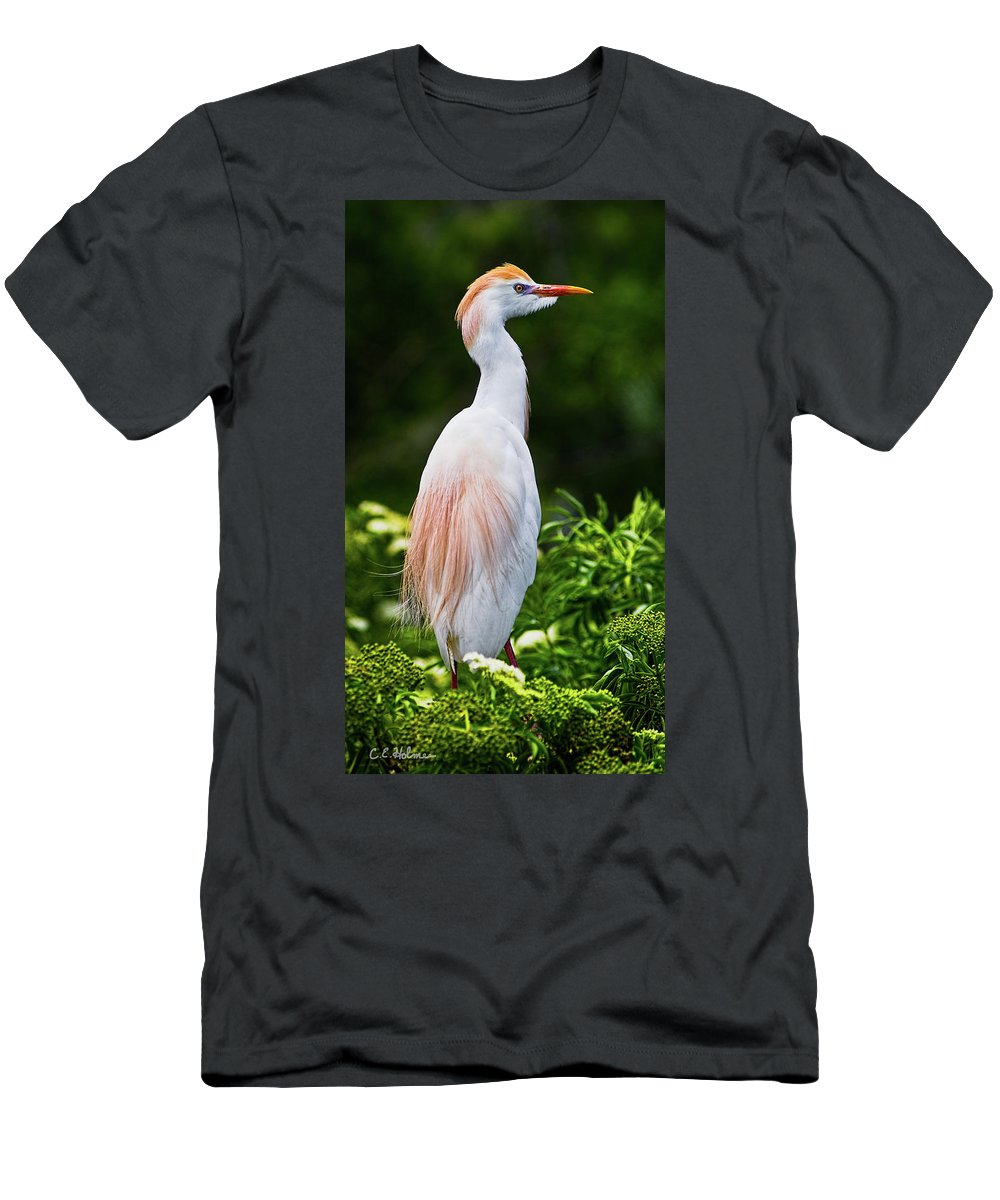 Cattle Egret Men's T-Shirt (Athletic Fit) featuring the photograph Wearing Spring Colors by Christopher Holmes