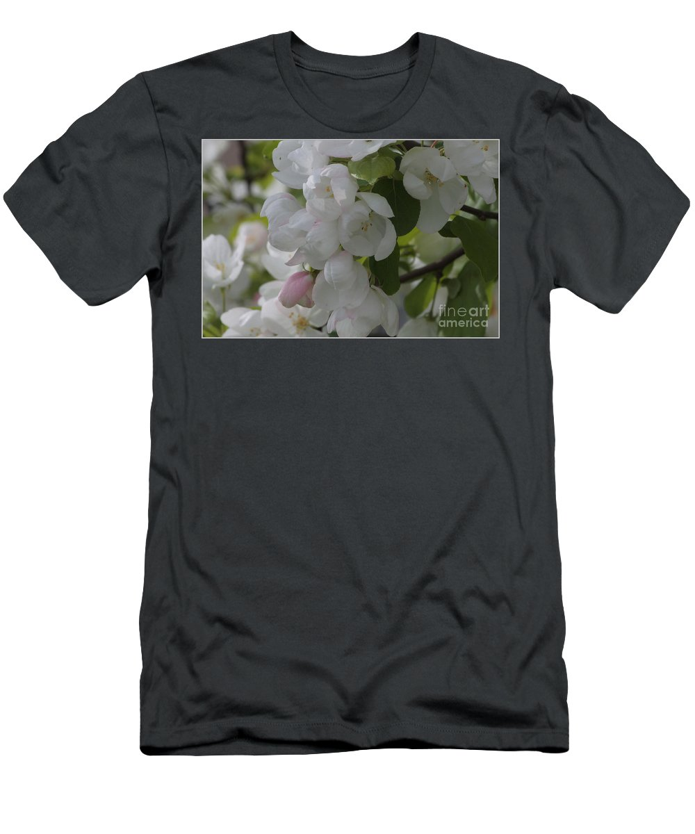Apple Blossoms Men's T-Shirt (Athletic Fit) featuring the photograph Welcome Spring by Luv Photography