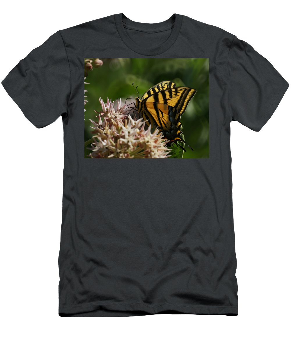 Bugs Men's T-Shirt (Athletic Fit) featuring the photograph Western Tiger Swallowtail by Ernie Echols