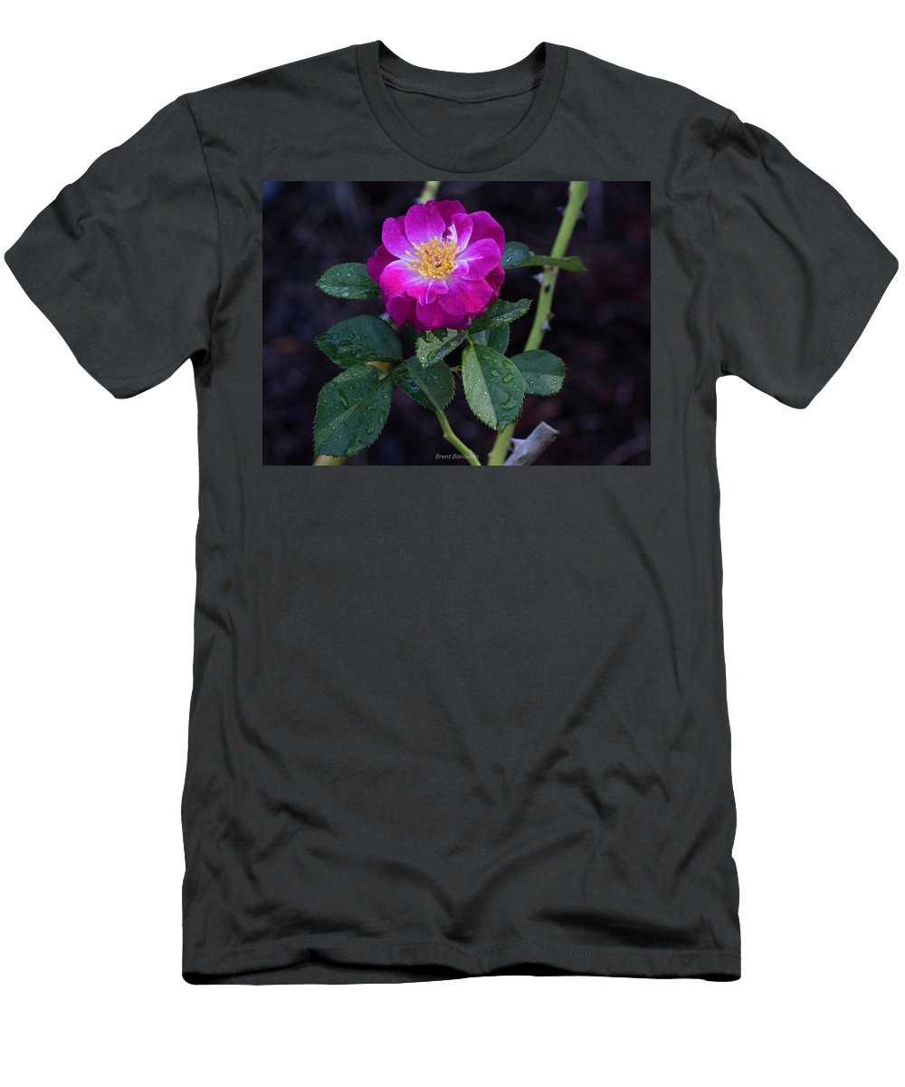 Rose Men's T-Shirt (Athletic Fit) featuring the photograph Wet Rose 2 by Brent Bordelon