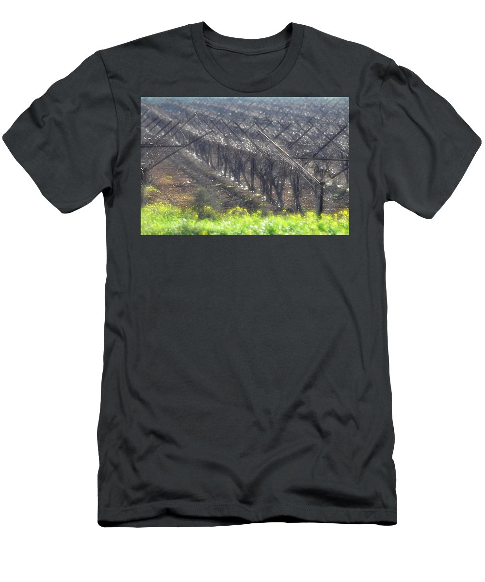 Wet Vineyard At Lachish Men's T-Shirt (Athletic Fit) featuring the photograph Wet Vineyard by Dubi Roman
