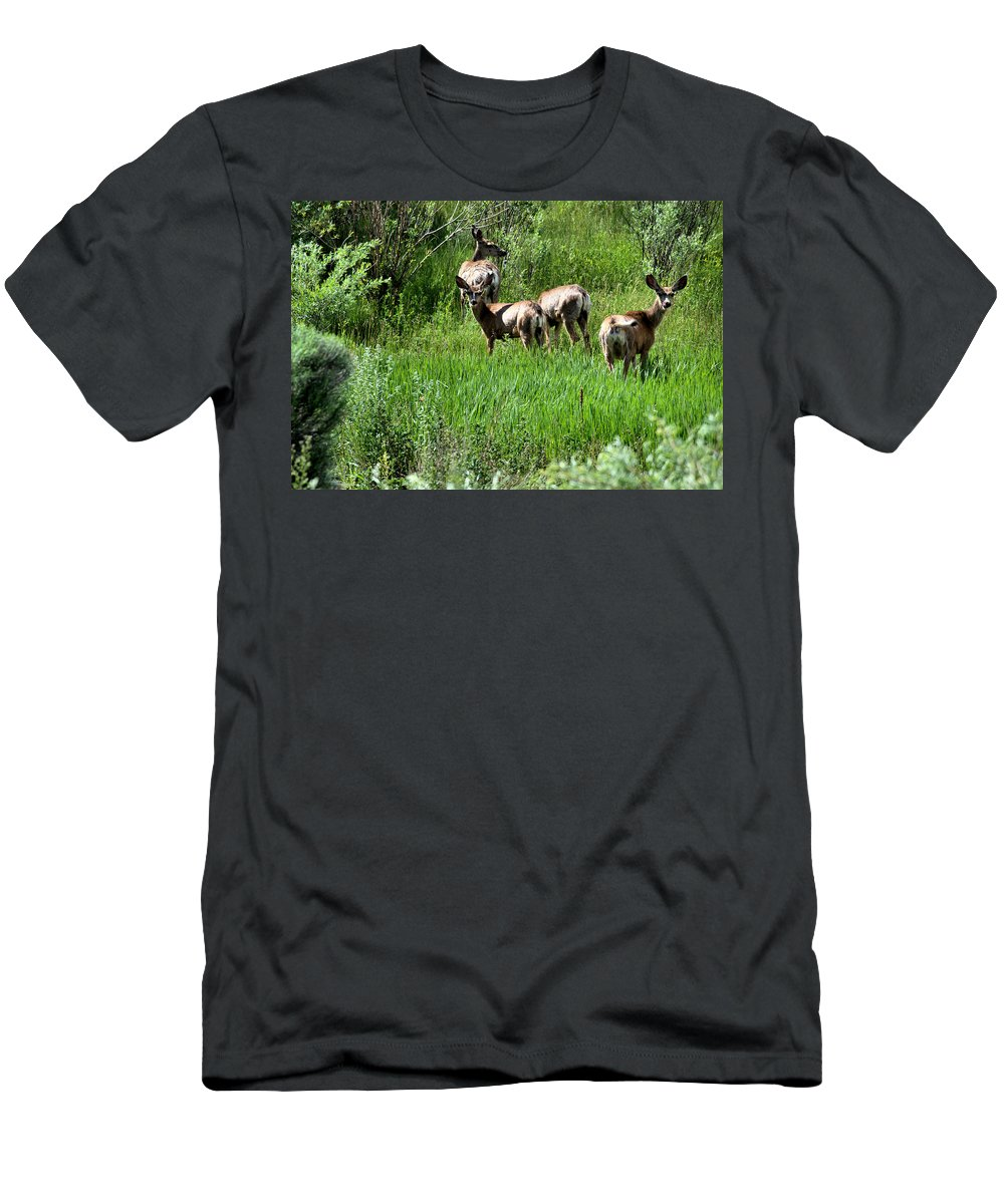 Deer Men's T-Shirt (Athletic Fit) featuring the photograph What Are You Looking At? by Chris Giese