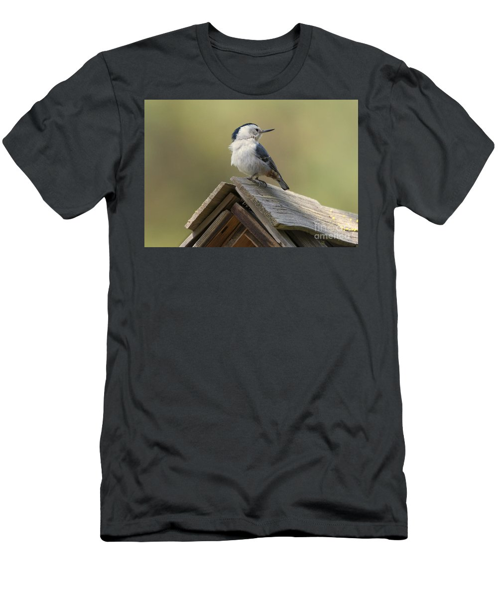 White-breasted Nuthatch Men's T-Shirt (Athletic Fit) featuring the photograph White-breasted Nuthatch by Mike Dawson