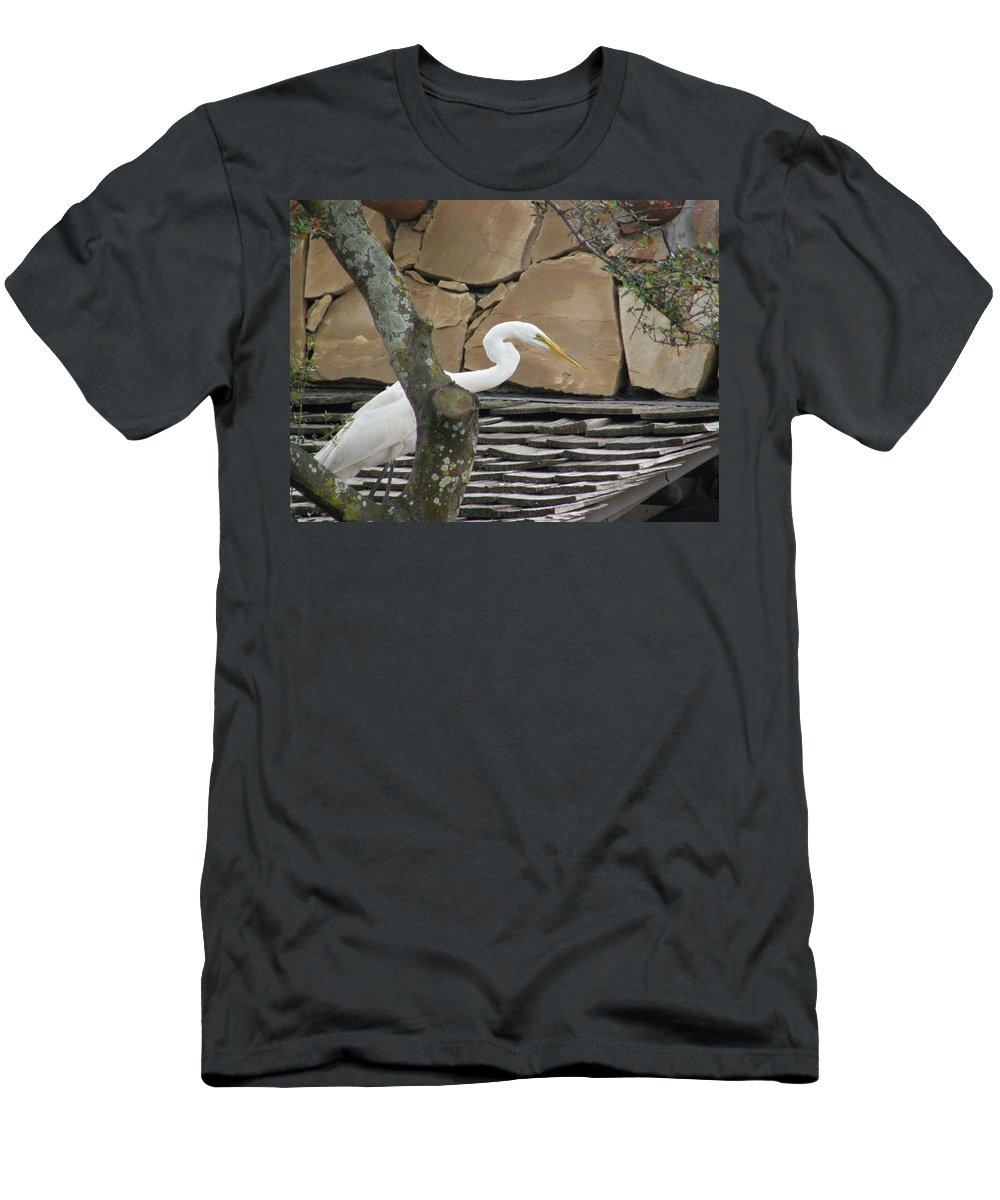 White Crane Men's T-Shirt (Athletic Fit) featuring the photograph White Crane On Roof by Alice Markham