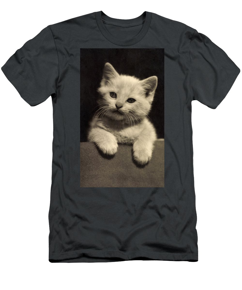 Cat Men's T-Shirt (Athletic Fit) featuring the photograph White Fluffy Kitten by German School