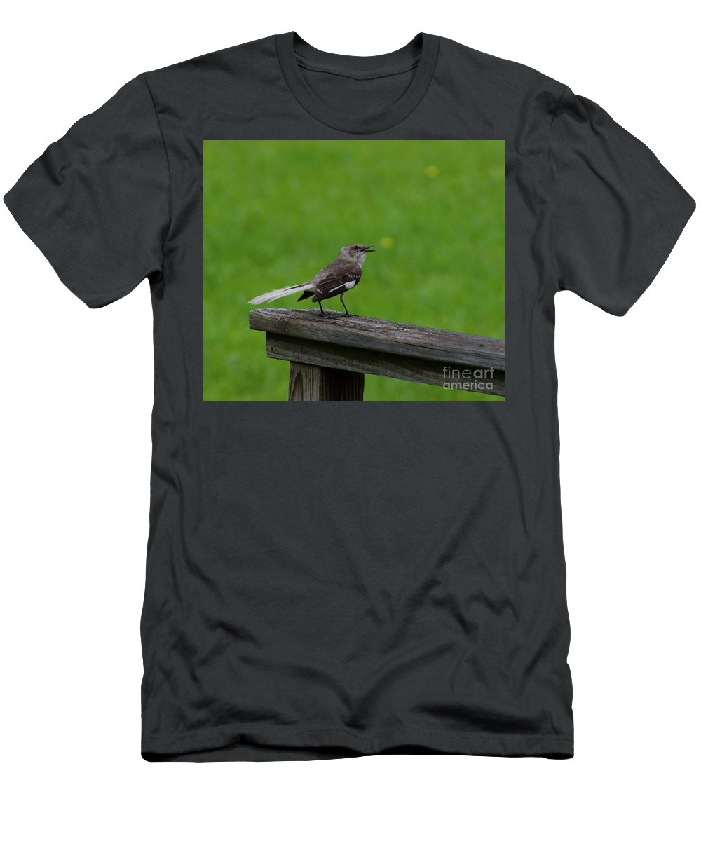 Bird Men's T-Shirt (Athletic Fit) featuring the photograph White Tailed Mocking Bird by Donna Brown
