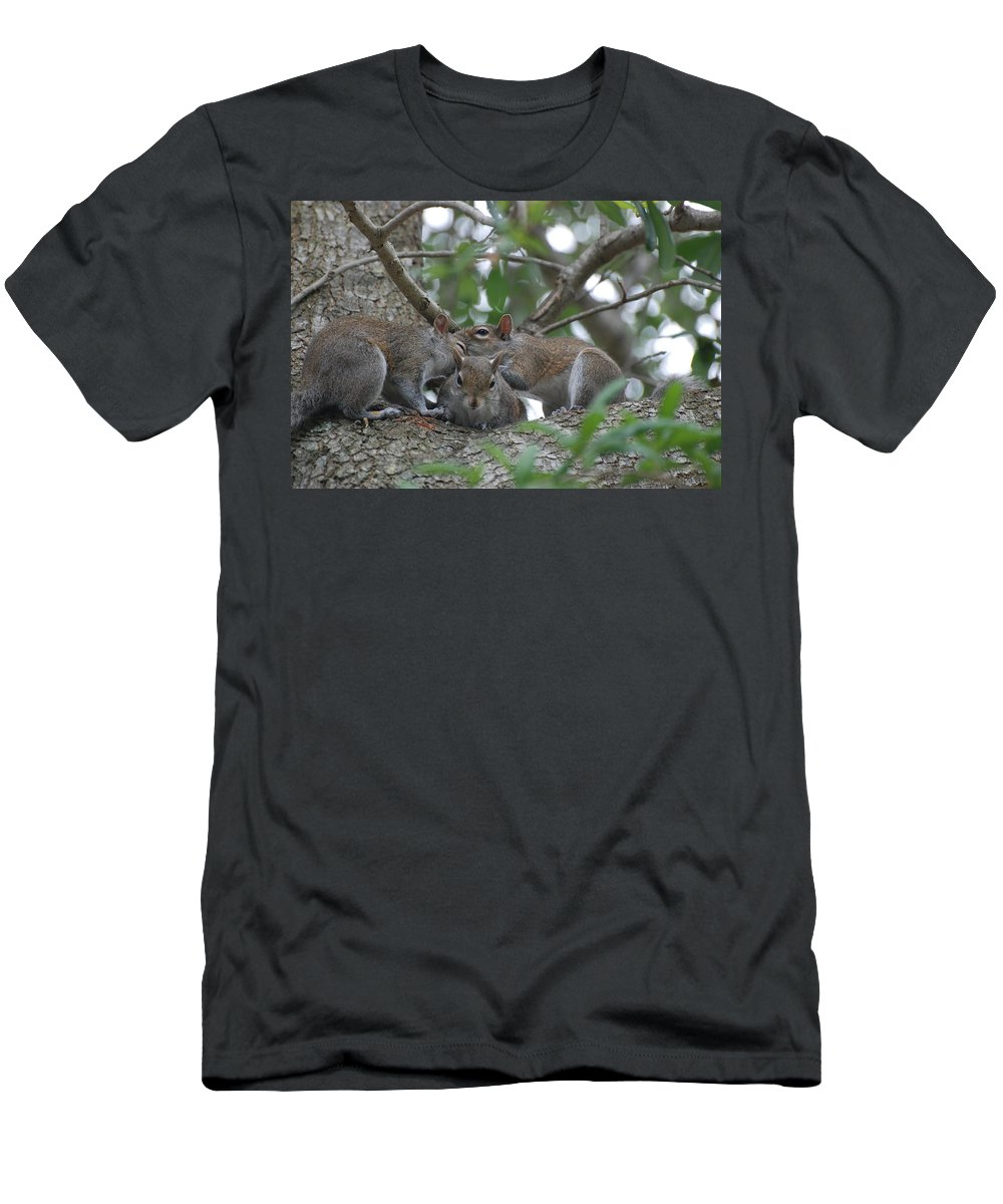 Squirrel Men's T-Shirt (Athletic Fit) featuring the photograph Why Me by Rob Hans