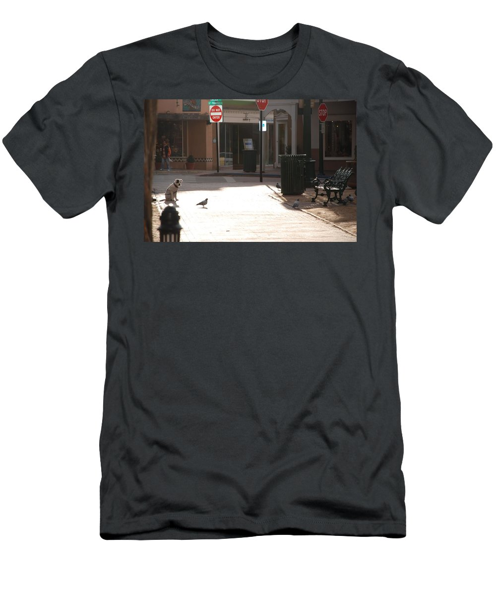 Dog Men's T-Shirt (Athletic Fit) featuring the photograph Why Question Mark by Rob Hans
