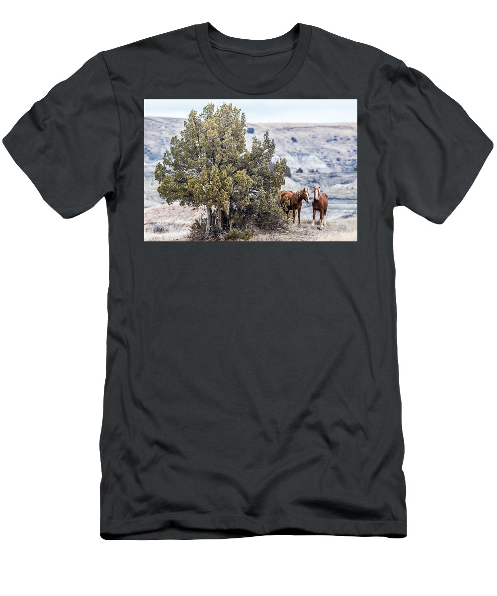 Wild Horses Men's T-Shirt (Athletic Fit) featuring the photograph Wild Horses by Paul Freidlund
