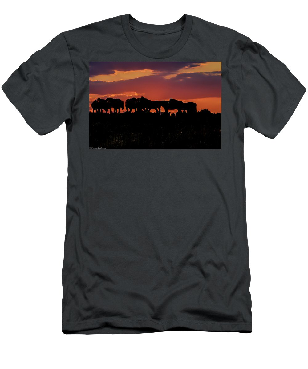 Horses Men's T-Shirt (Athletic Fit) featuring the photograph Wild Mustangs At Sunset by Tommy Anderson