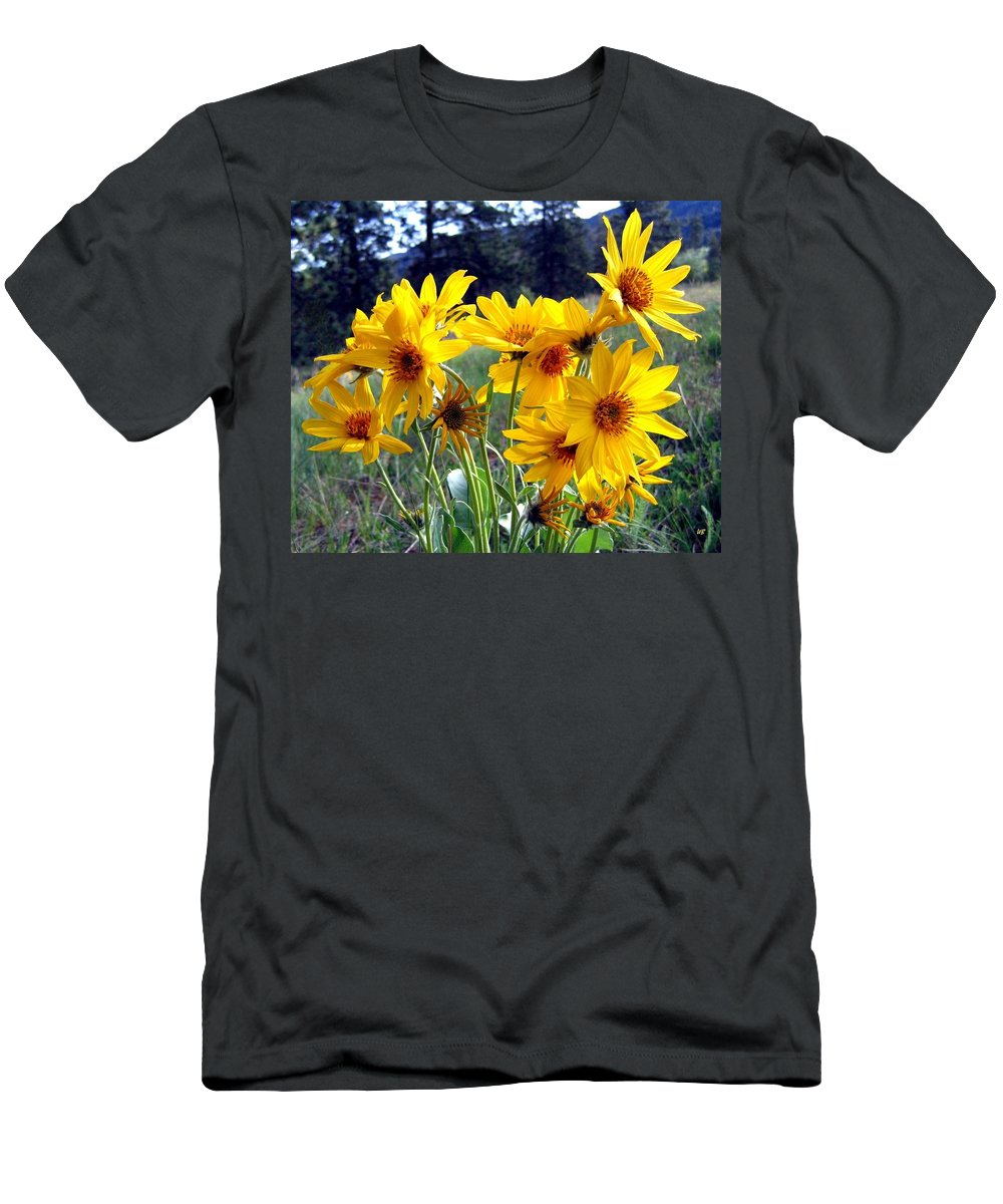 Sunflowers Men's T-Shirt (Athletic Fit) featuring the photograph Wild Okanagan Sunflowers by Will Borden