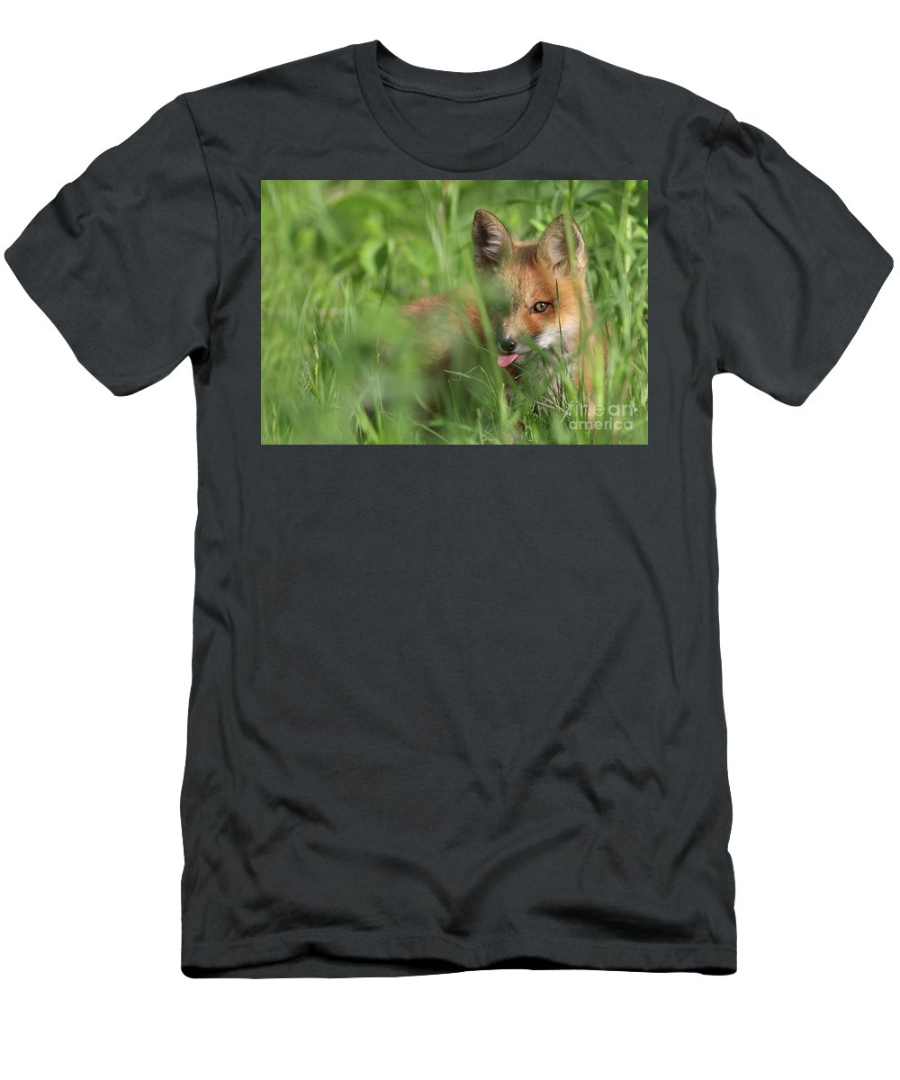 Adorable Men's T-Shirt (Athletic Fit) featuring the photograph Wild Red Fox Puppy by Mircea Costina Photography