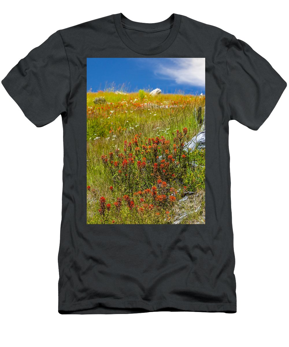 Castilleja Miniata Men's T-Shirt (Athletic Fit) featuring the photograph Wildflower Meadow With Indian Paintbrush by John Trax