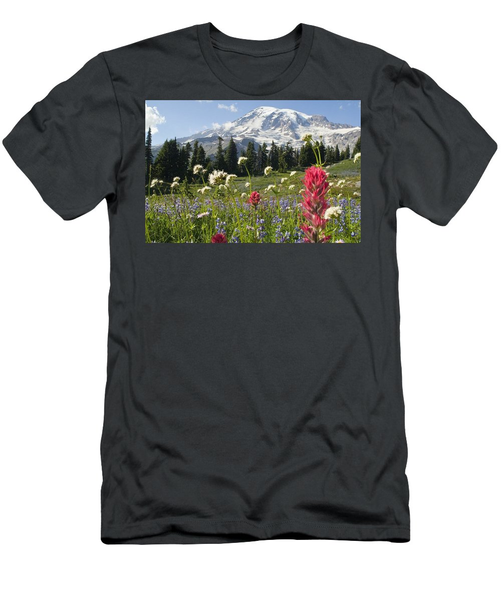 Attractions Men's T-Shirt (Athletic Fit) featuring the photograph Wildflowers In Mount Rainier National by Dan Sherwood