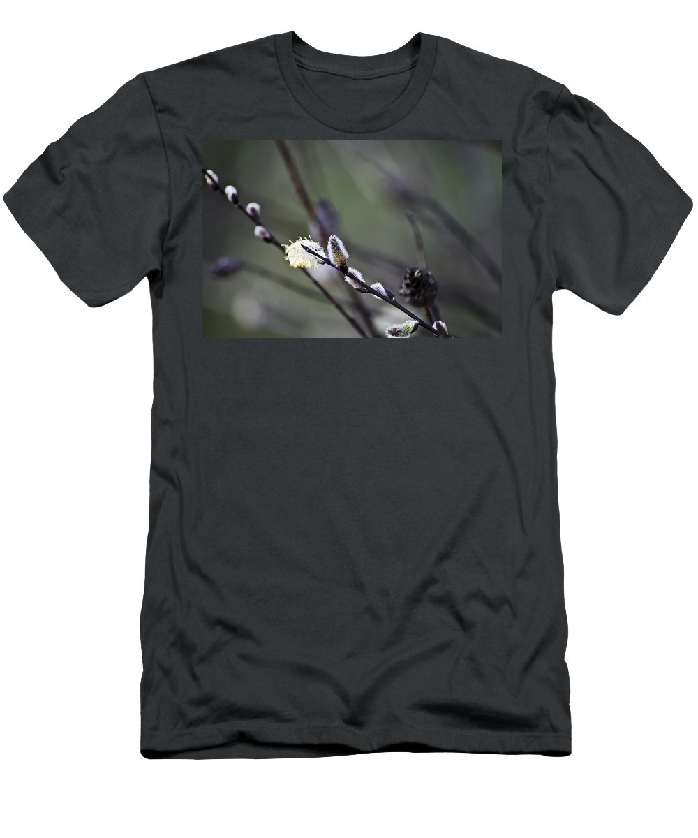 Usa Men's T-Shirt (Athletic Fit) featuring the photograph Willow Stages by LeeAnn McLaneGoetz McLaneGoetzStudioLLCcom