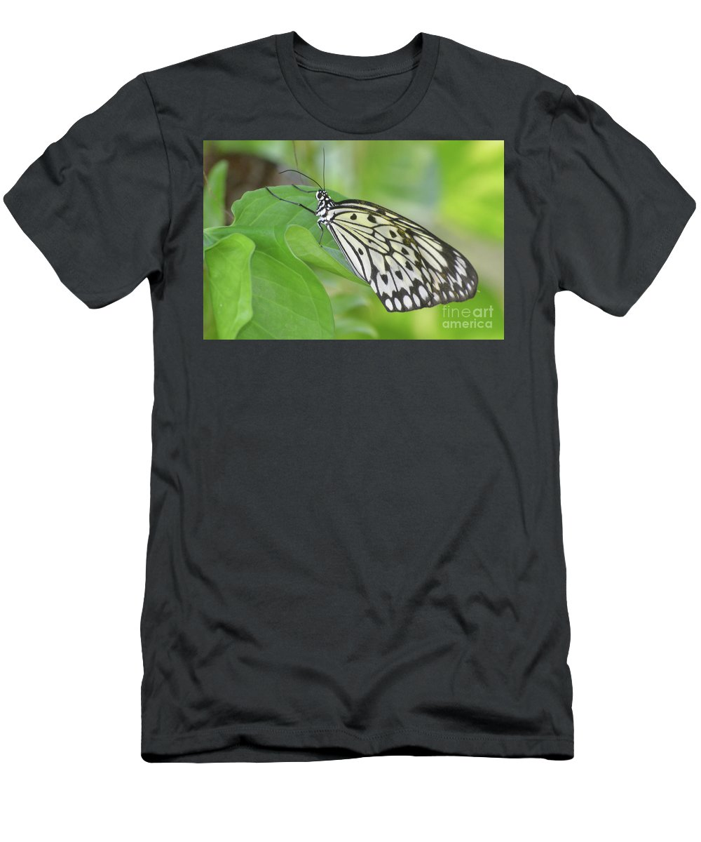 Tree-nymph Men's T-Shirt (Athletic Fit) featuring the photograph Wonderful Up Close Look At A Large Tree Nymph Butterfly by DejaVu Designs