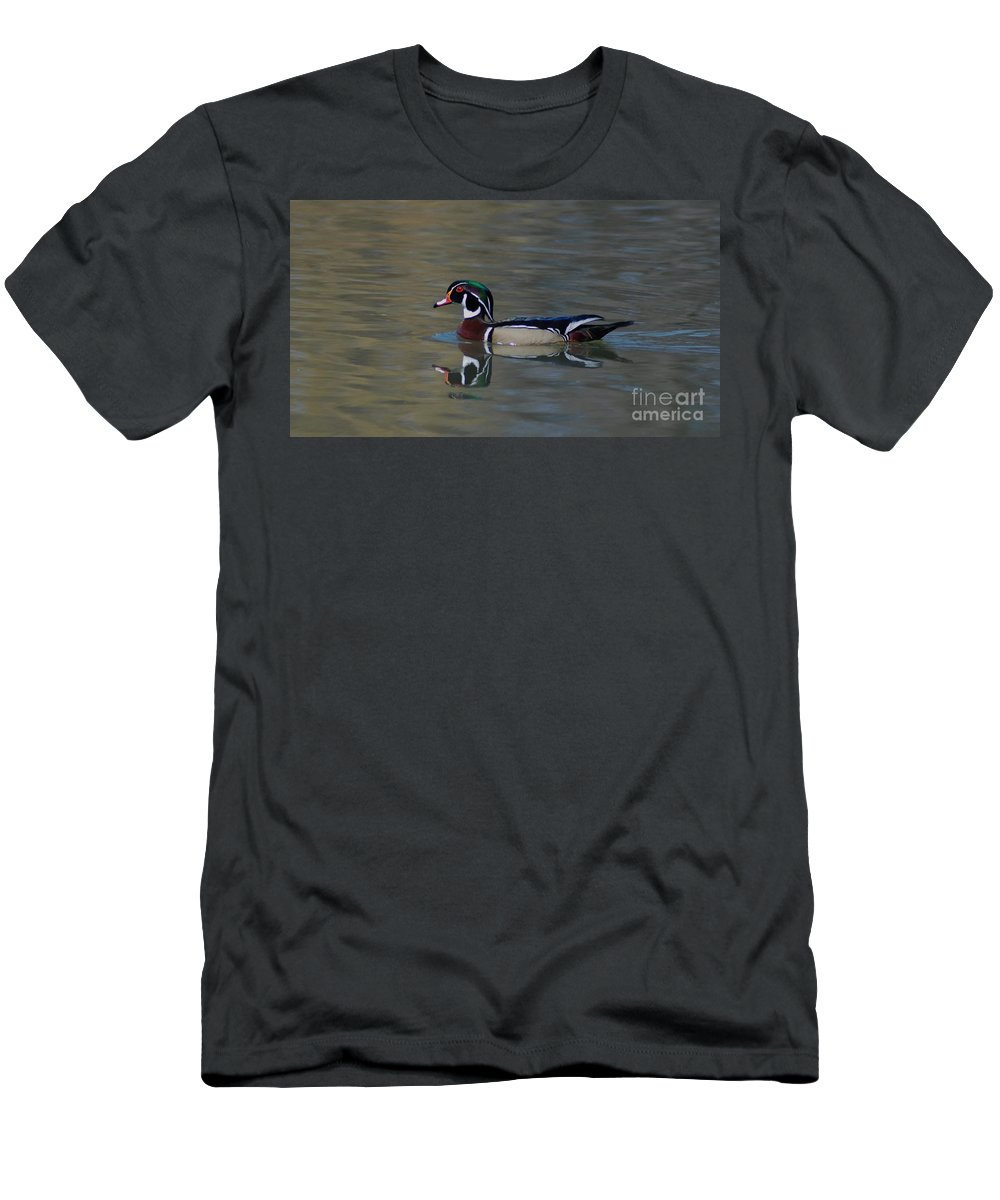 Duck Men's T-Shirt (Athletic Fit) featuring the photograph Wood Duck - Male by Ronald Grogan