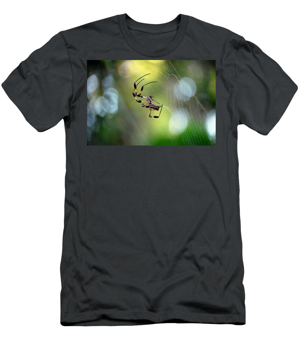 Working The Web Men's T-Shirt (Athletic Fit) featuring the photograph Working The Web by Robert Meanor