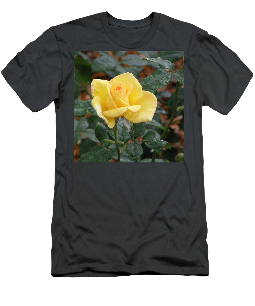 Yellow Rose Men's T-Shirt (Athletic Fit) featuring the photograph Yellow Rose In The Rain by Alice Markham