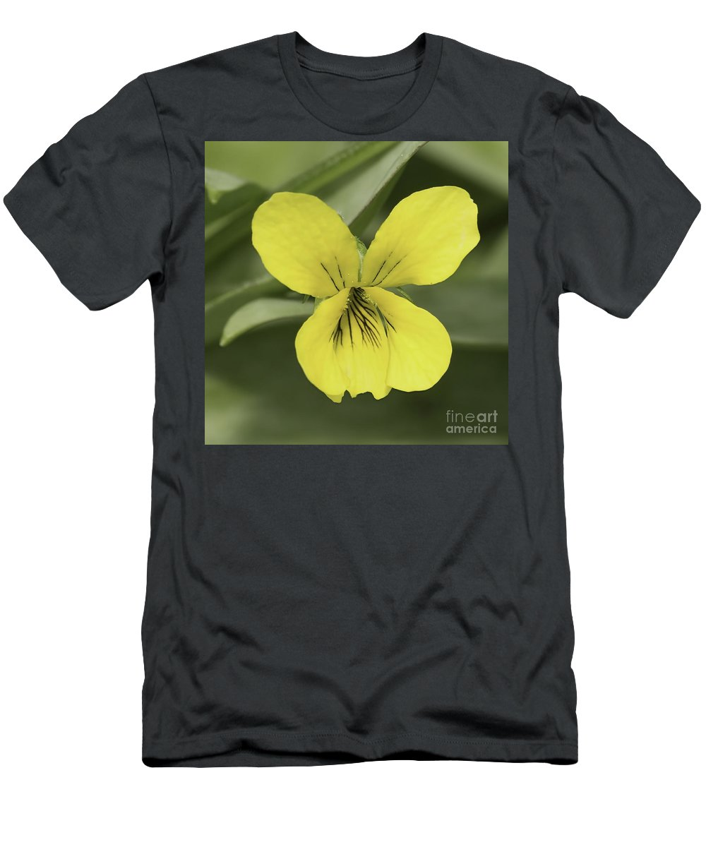 Flower Men's T-Shirt (Athletic Fit) featuring the photograph Yellow Wild Violet by Nikki Vig