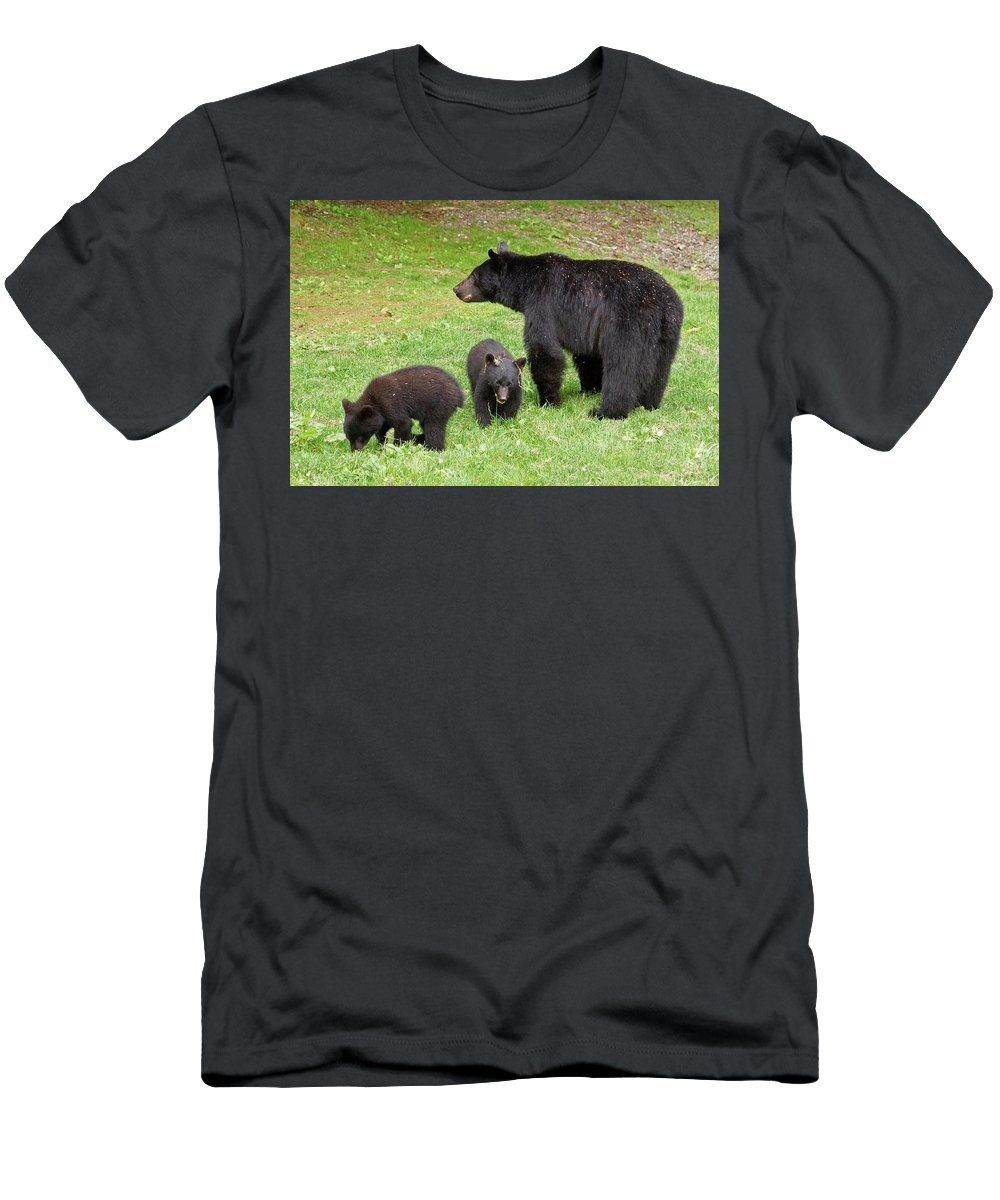 Black Bear Men's T-Shirt (Athletic Fit) featuring the photograph Young Family by Inge Riis McDonald
