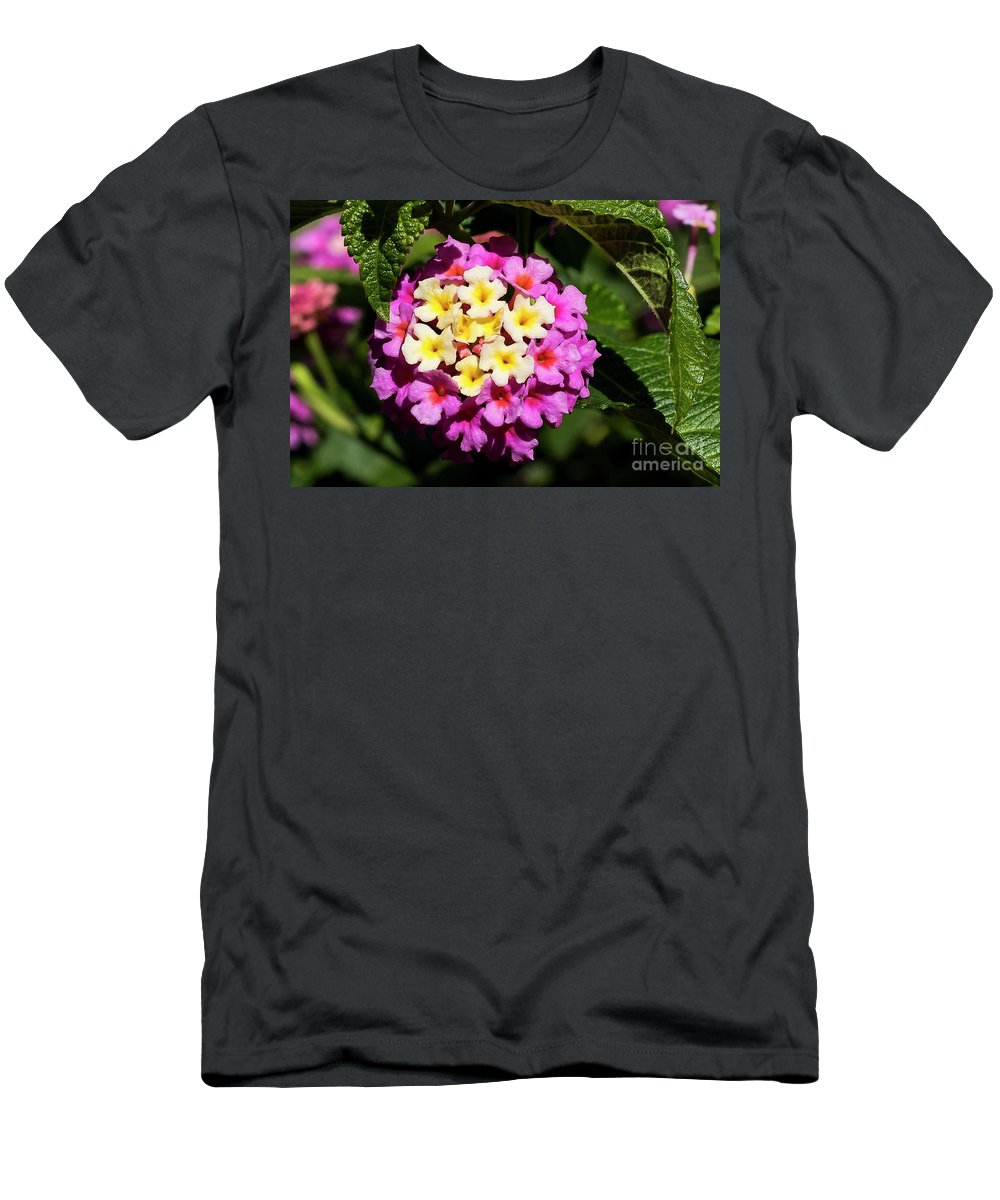 Lantana Men's T-Shirt (Athletic Fit) featuring the photograph Lantana by Michael D Miller