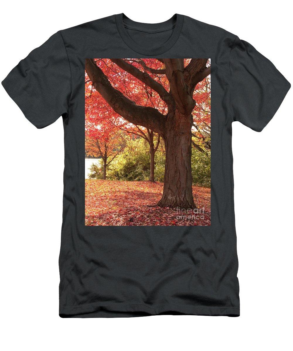 Autumn T-Shirt featuring the photograph Shading Autumn by Ann Horn