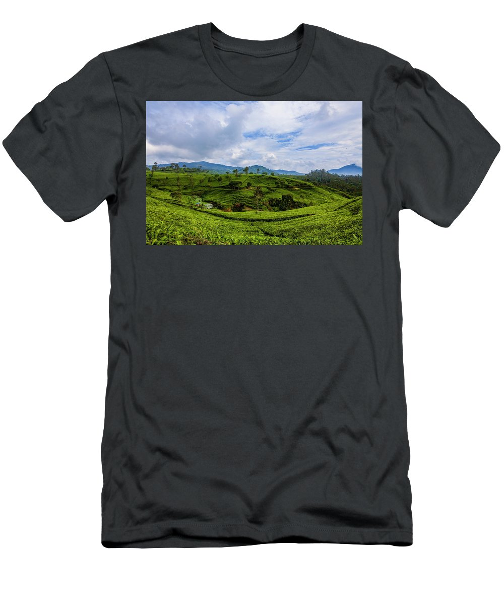 Landscape T-Shirt featuring the photograph Tea Plantation by Irman Andriana