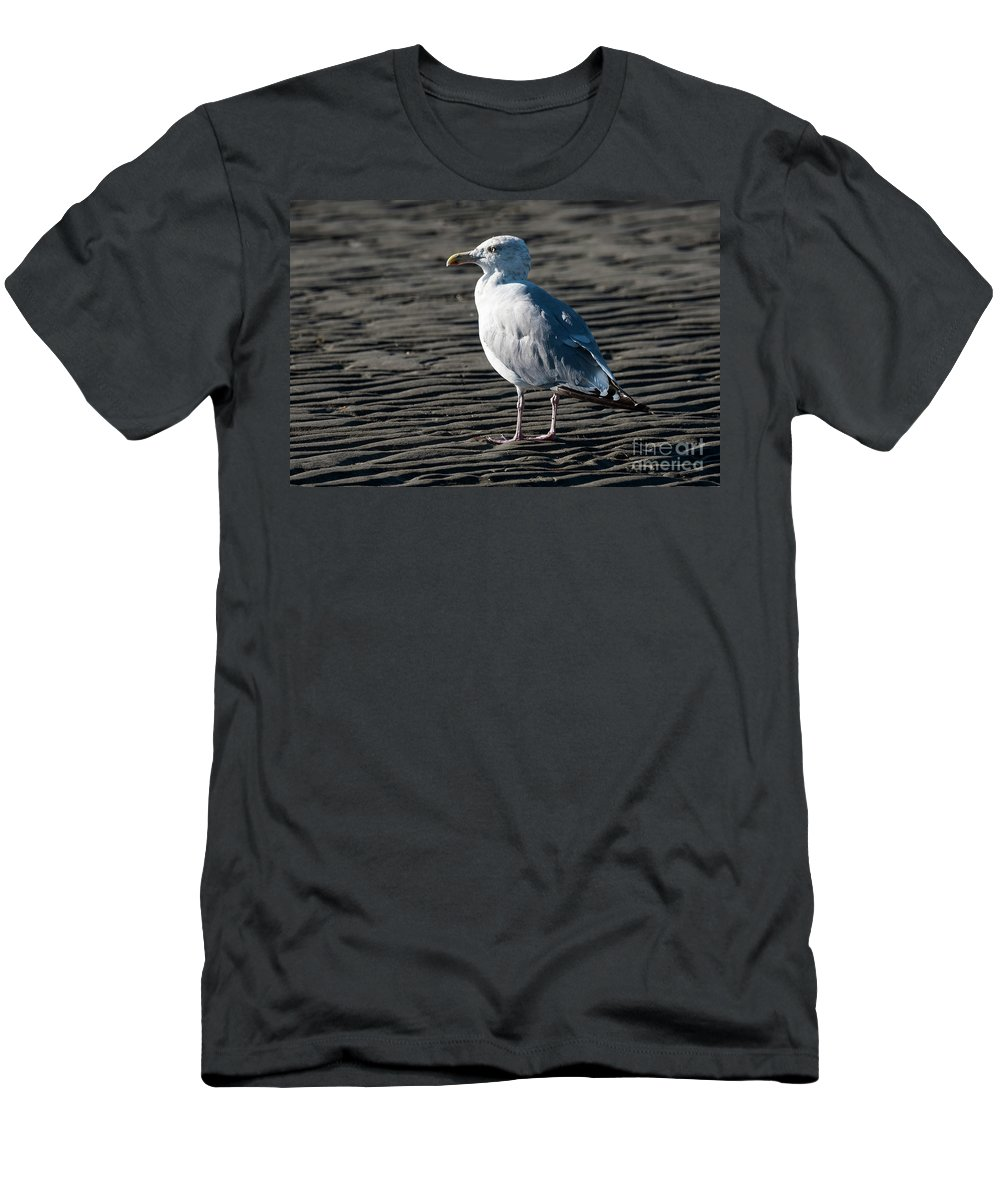 Seagull Men's T-Shirt (Athletic Fit) featuring the photograph Seagull On Beach by Michael D Miller