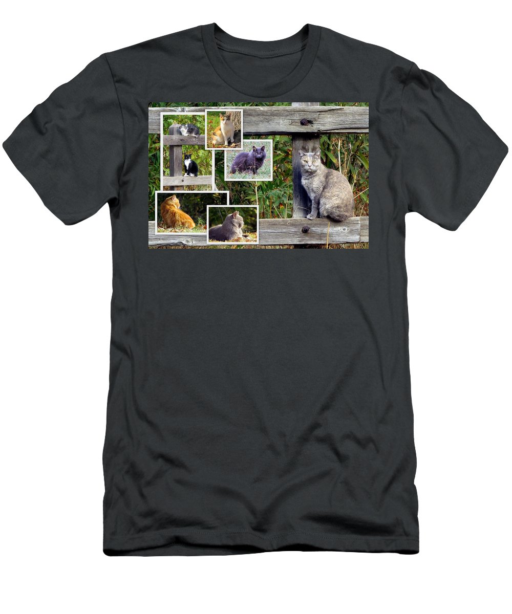 Collage Men's T-Shirt (Athletic Fit) featuring the photograph A Variety Of Cats by Linda Vanoudenhaegen