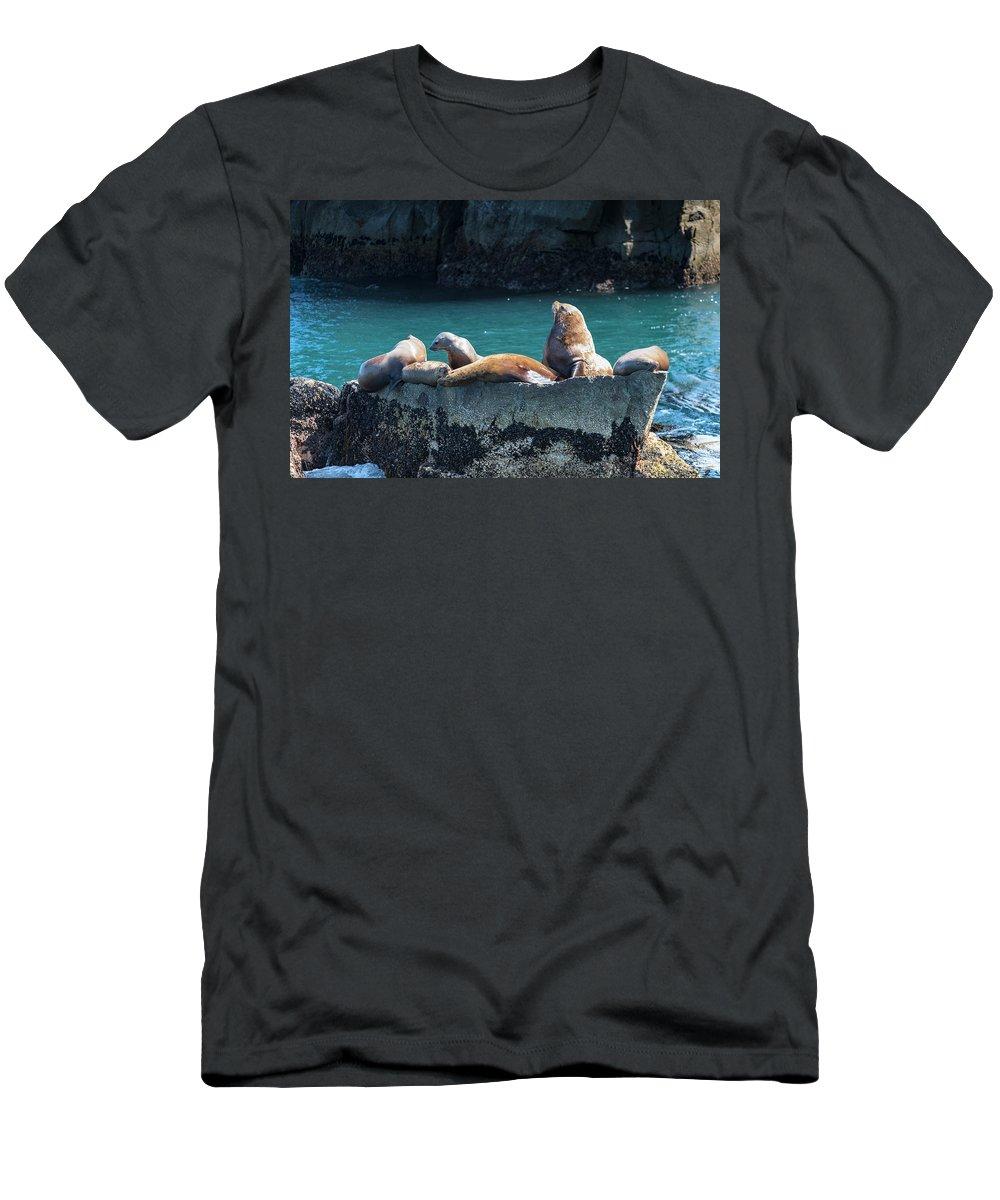 Alaska Coastline Men's T-Shirt (Athletic Fit) featuring the photograph Alaska Steller Sea Lions by Scott Slone