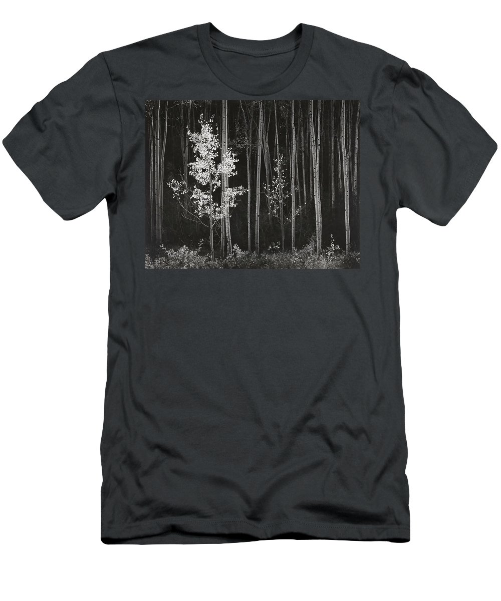 Ansel Adams Men's T-Shirt (Athletic Fit) featuring the digital art Aspens Northern New Mexico by Ansel Adams