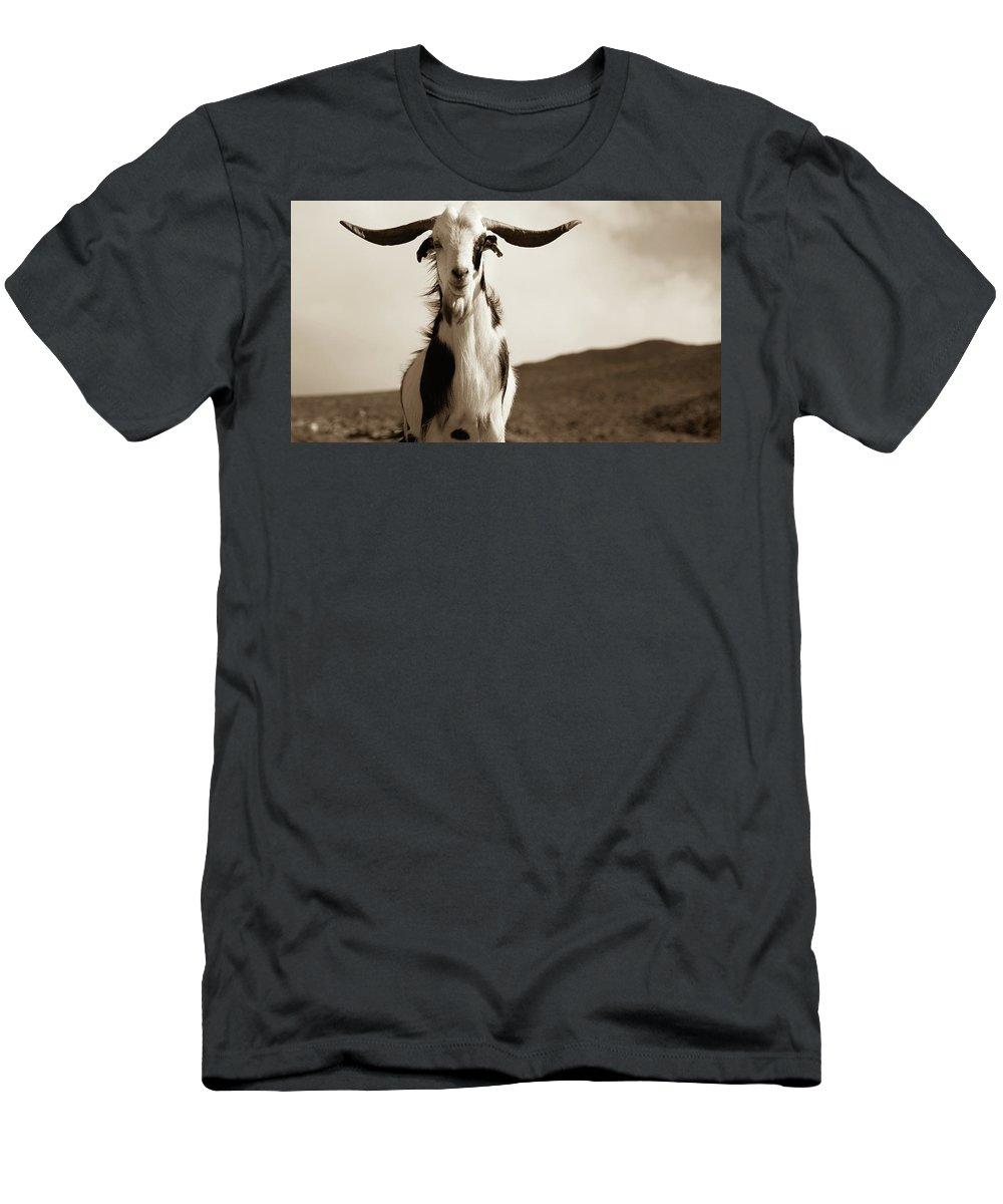 Landscape Men's T-Shirt (Athletic Fit) featuring the photograph Cabra De Fuerteventura by Eliza Spatar