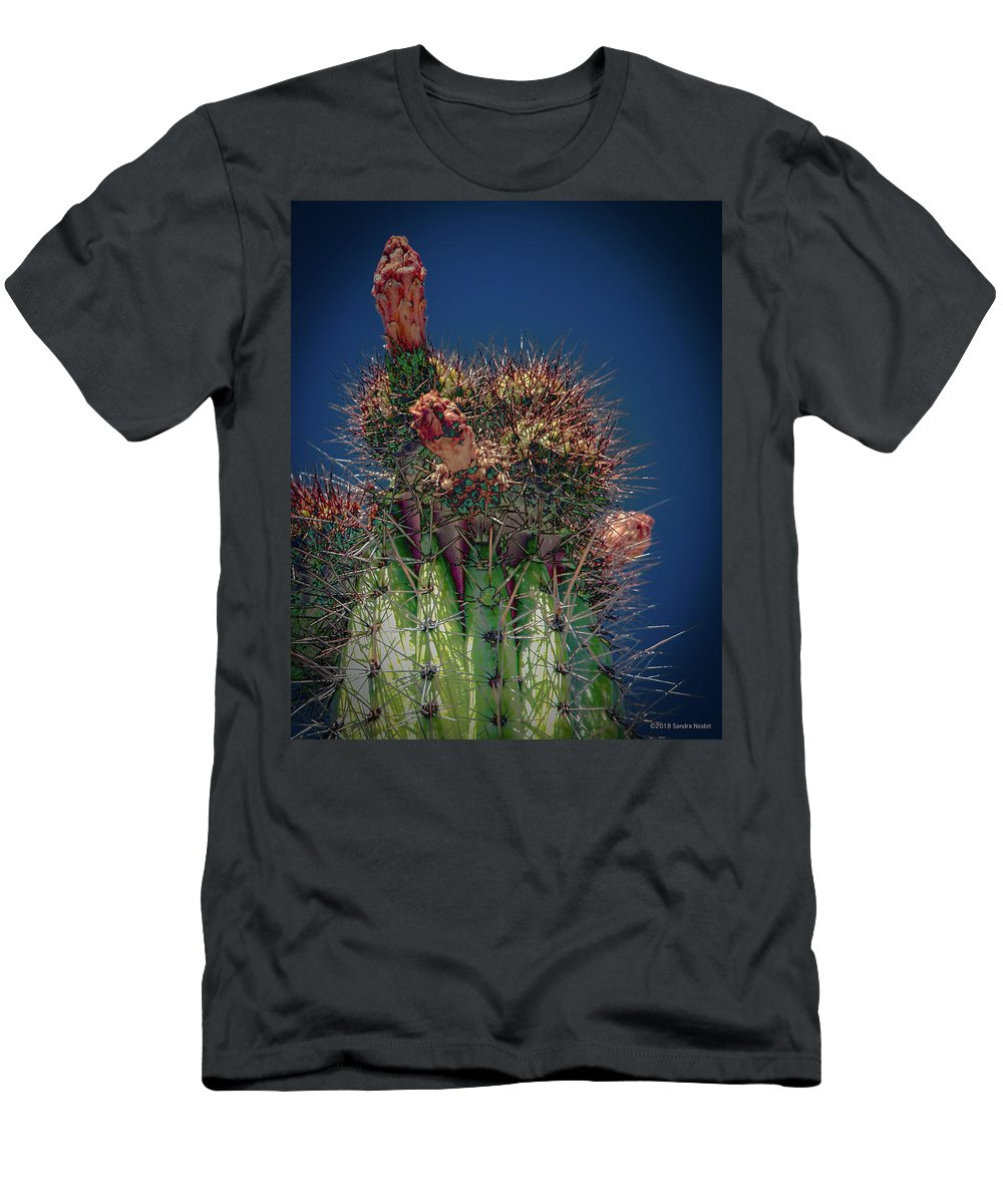 Desert Men's T-Shirt (Athletic Fit) featuring the photograph Cactus With Pink Flower by Sandra Nesbit