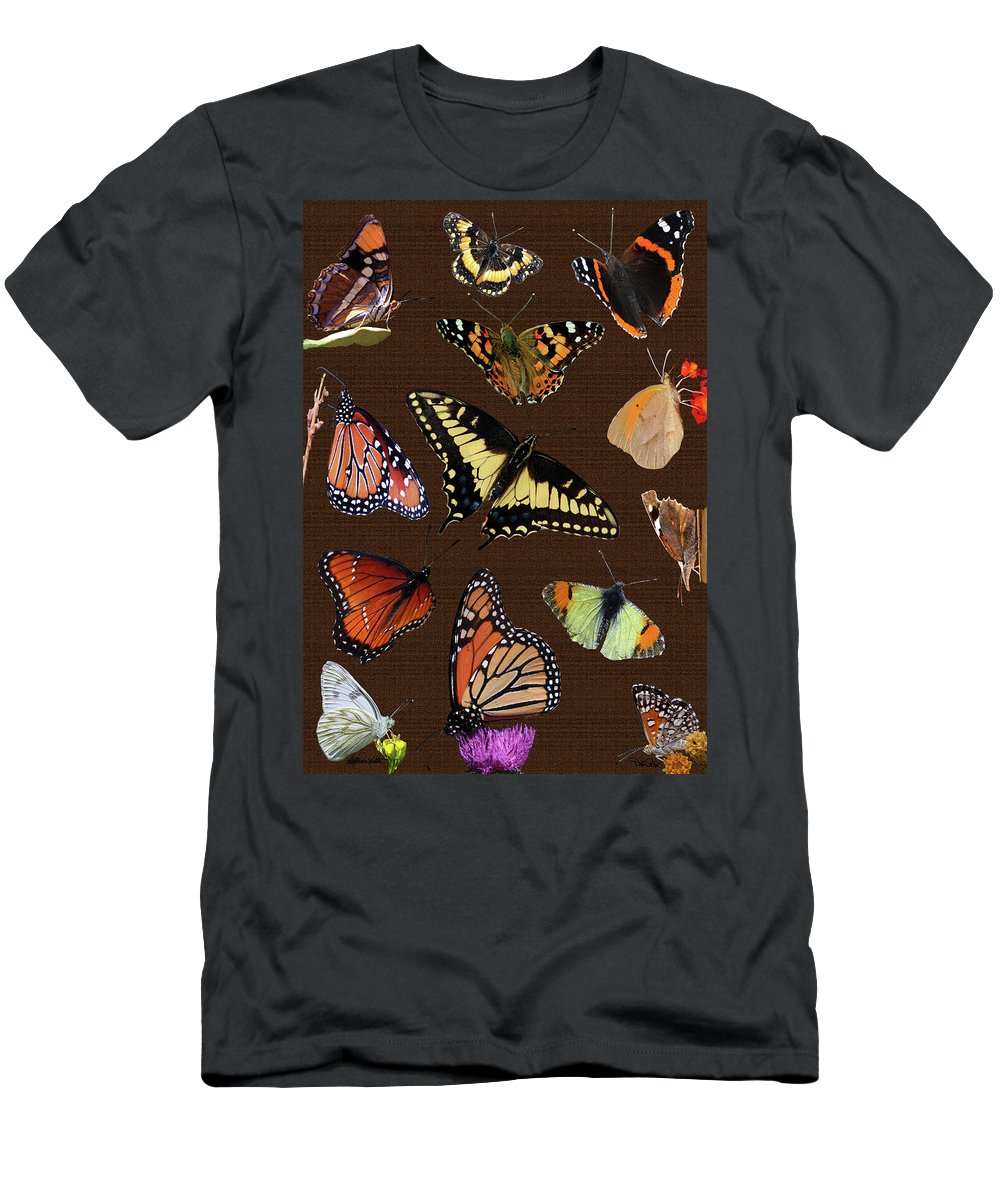 Nature Men's T-Shirt (Athletic Fit) featuring the photograph Collage Of Ca Butterflies by David Salter