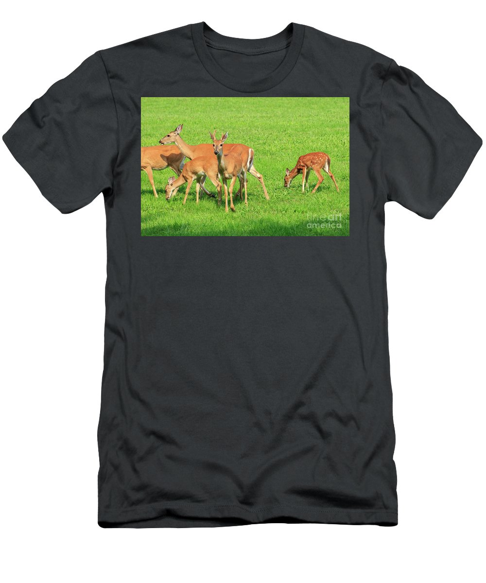 Deer Men's T-Shirt (Athletic Fit) featuring the photograph Deer Looking At You by Terri Morris