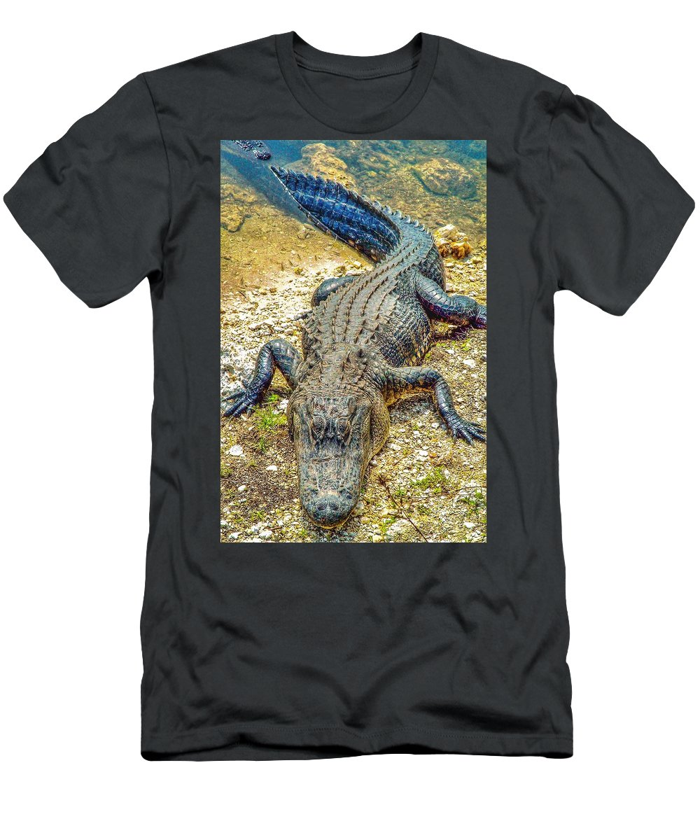 Florida Men's T-Shirt (Athletic Fit) featuring the photograph Florida Gator 2 by Tommy Anderson
