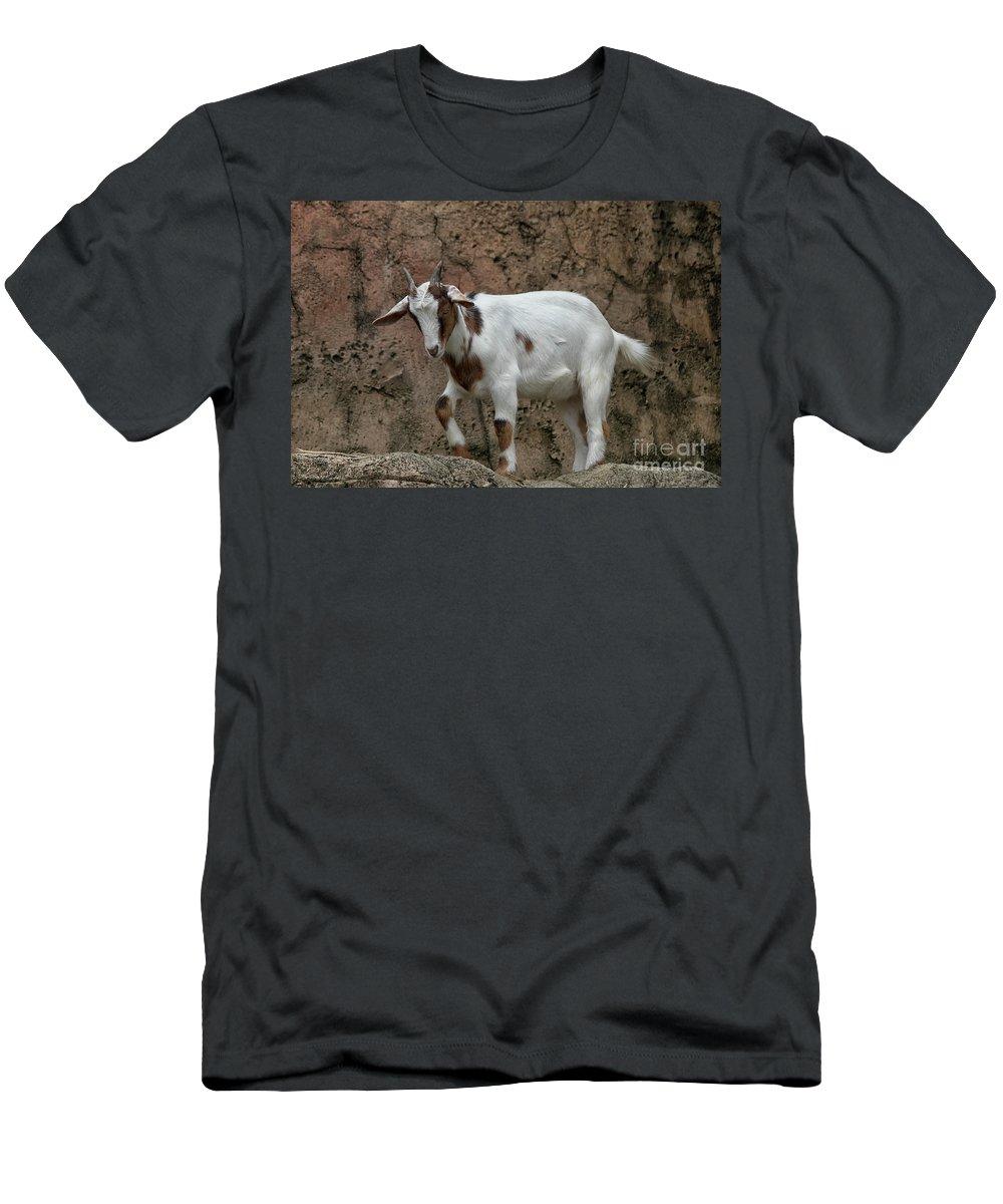 Goat Men's T-Shirt (Athletic Fit) featuring the photograph Goat Print 9245 by Paulette Thomas