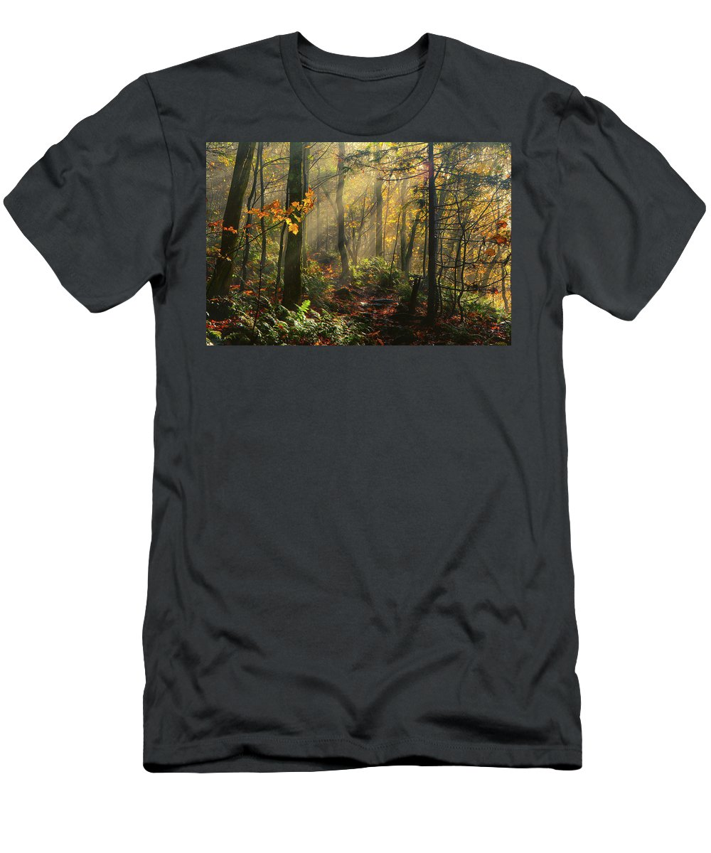 Rays Of Sun After A Storm Men's T-Shirt (Athletic Fit) featuring the photograph Horizontal Rays Of Sun After A Storm by Raymond Salani III