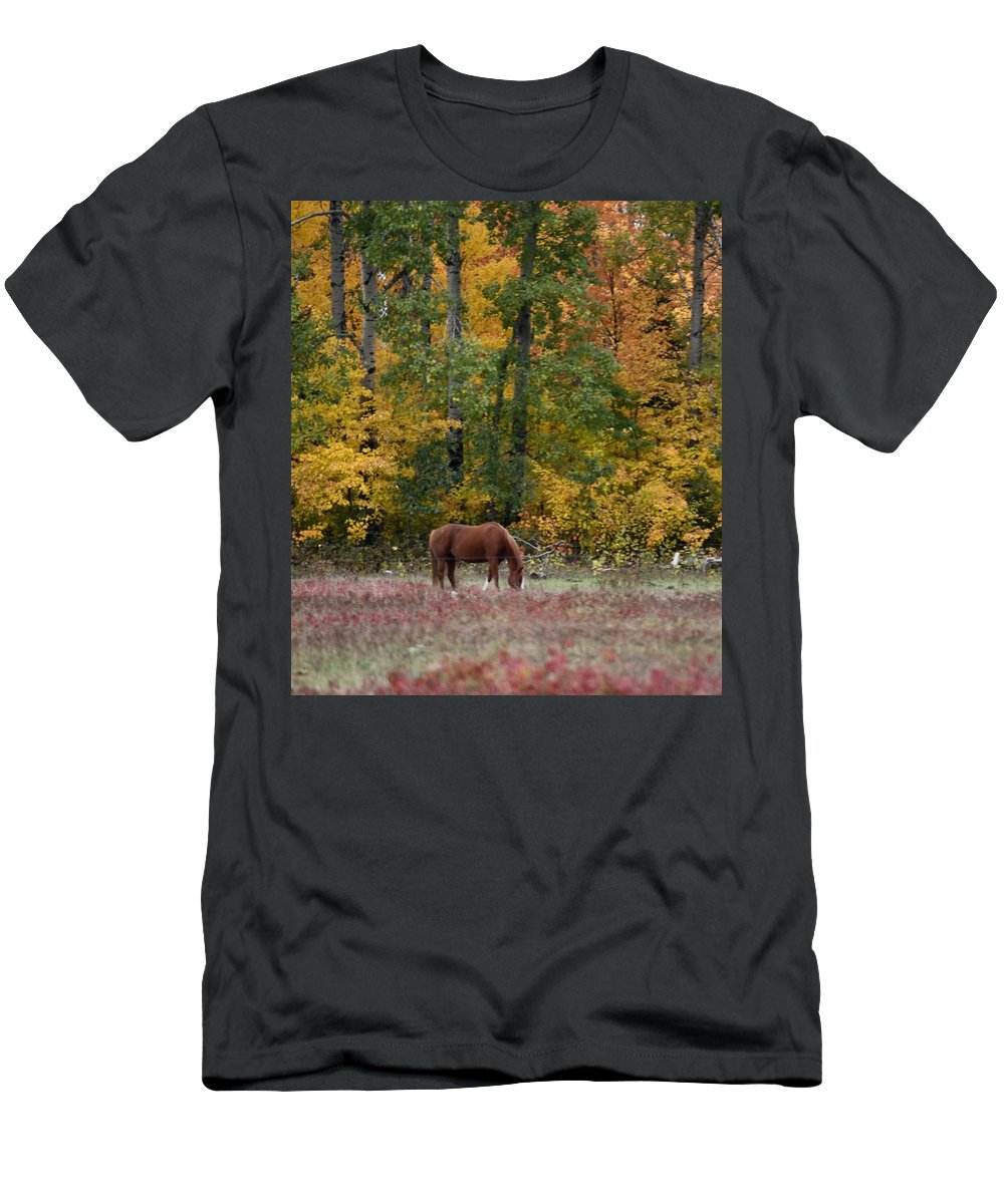 Fall Men's T-Shirt (Athletic Fit) featuring the photograph Horse In Fall by Hella Buchheim