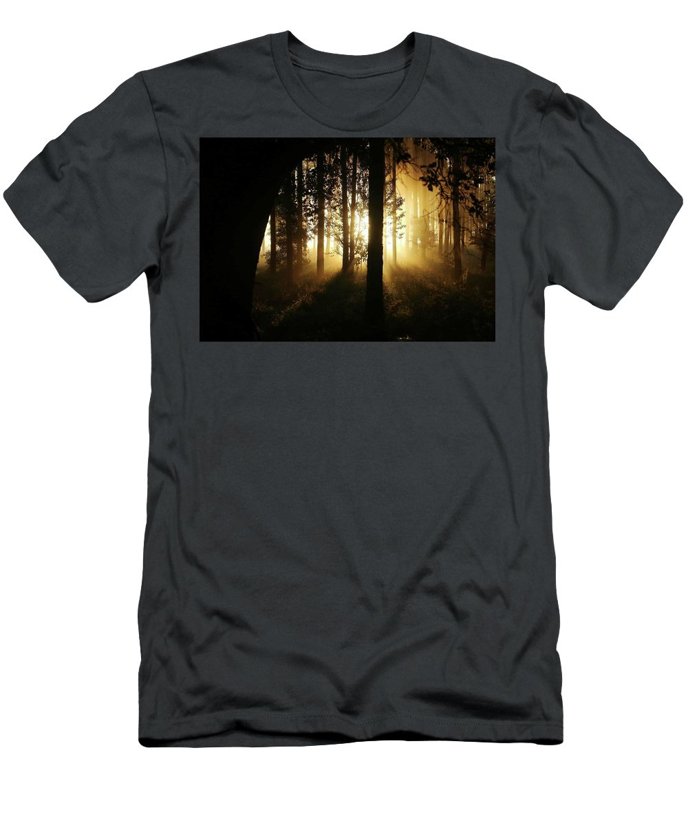 Woods Men's T-Shirt (Athletic Fit) featuring the photograph Light In The Woods by Brent Short