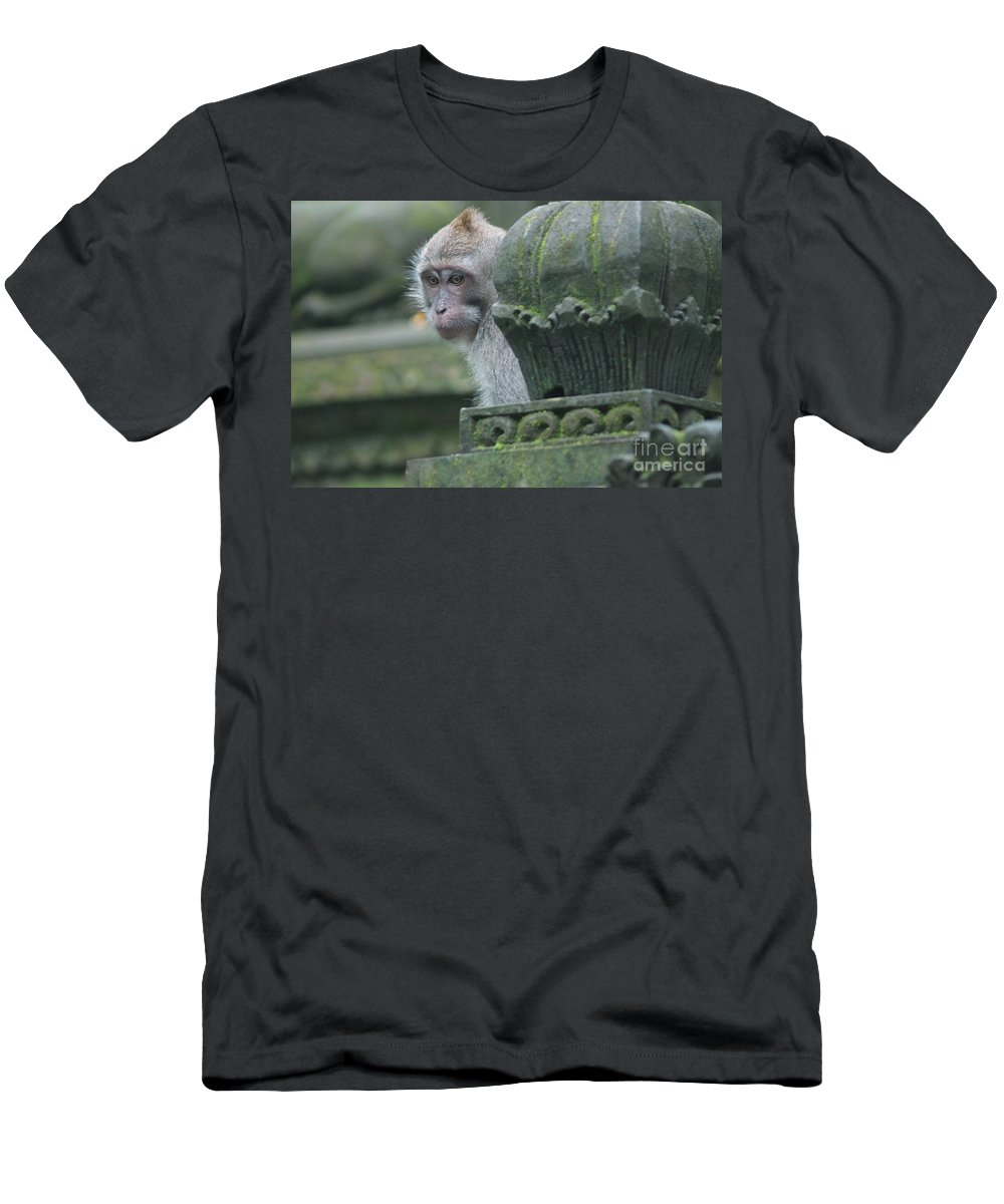 Long Tailed Macaque Men's T-Shirt (Athletic Fit) featuring the photograph Monkey Forest by Cassandra Buckley