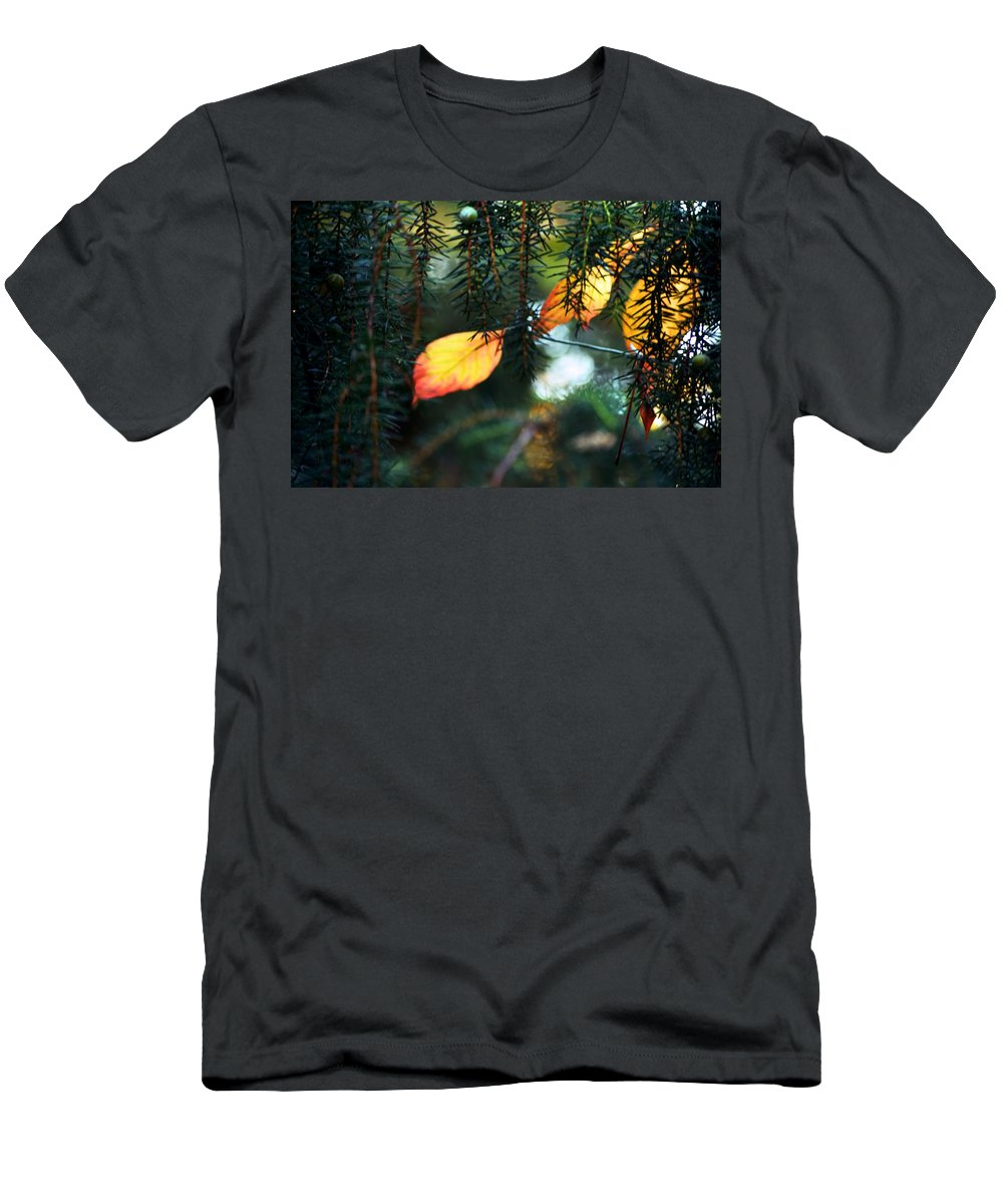 Tree Men's T-Shirt (Athletic Fit) featuring the photograph Nature's Glow by Valerie Dauce