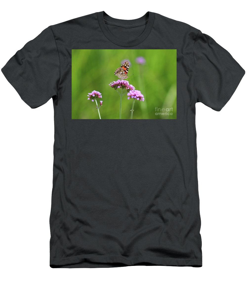 Painted Lady Butterfly Men's T-Shirt (Athletic Fit) featuring the photograph Painted Lady Butterfly In Green Field by Karen Adams