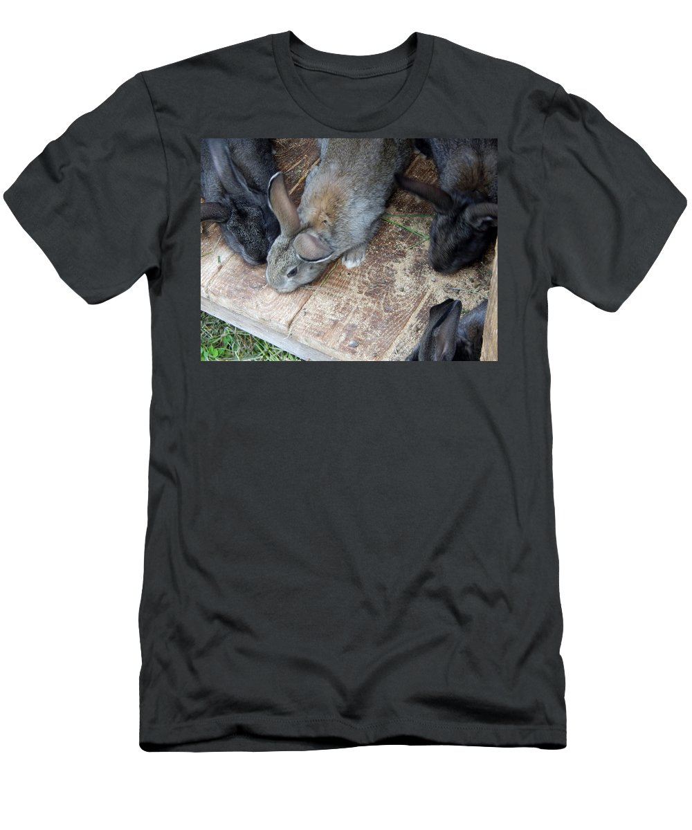 Rabbit Men's T-Shirt (Athletic Fit) featuring the photograph Rabbits In An Open-air Cage Growing On A Farm by Oleg Prokopenko
