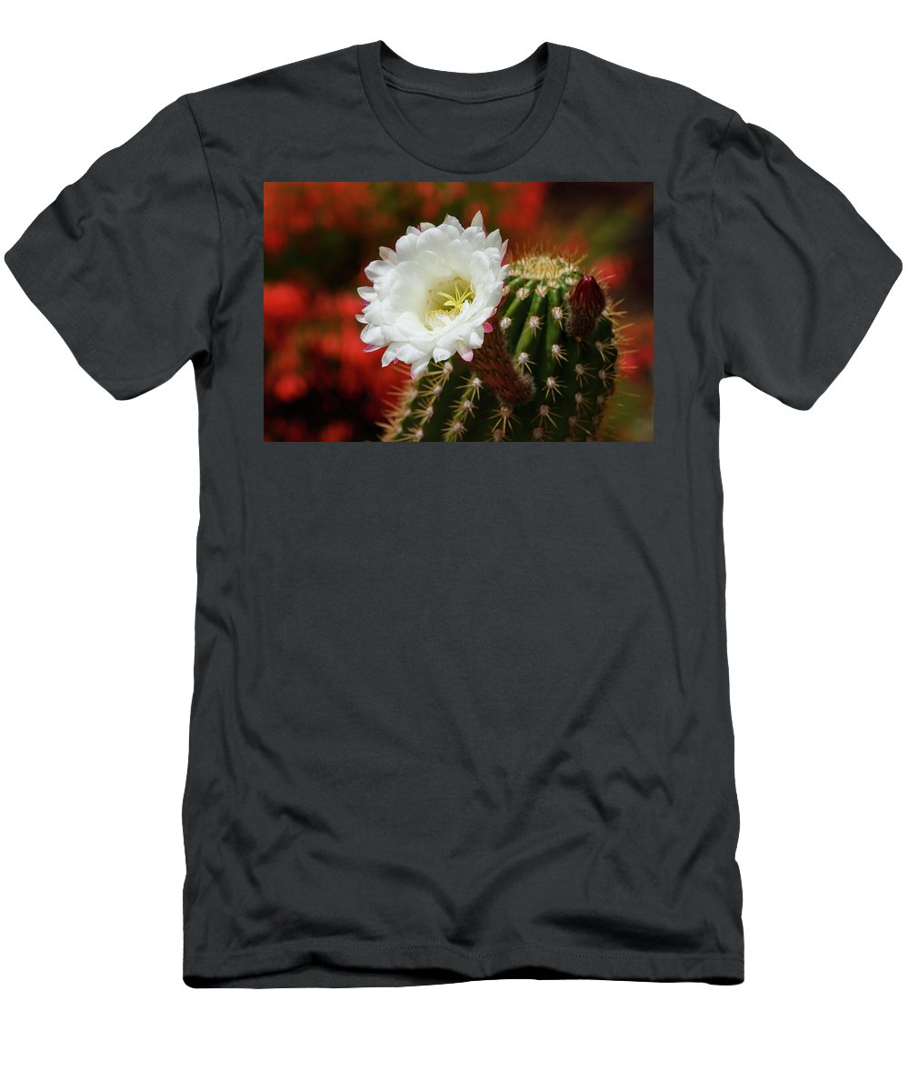 Arizona Men's T-Shirt (Athletic Fit) featuring the photograph Red Bougainvillea Background For White Argentine Giant Flower by Rolf Jacobson