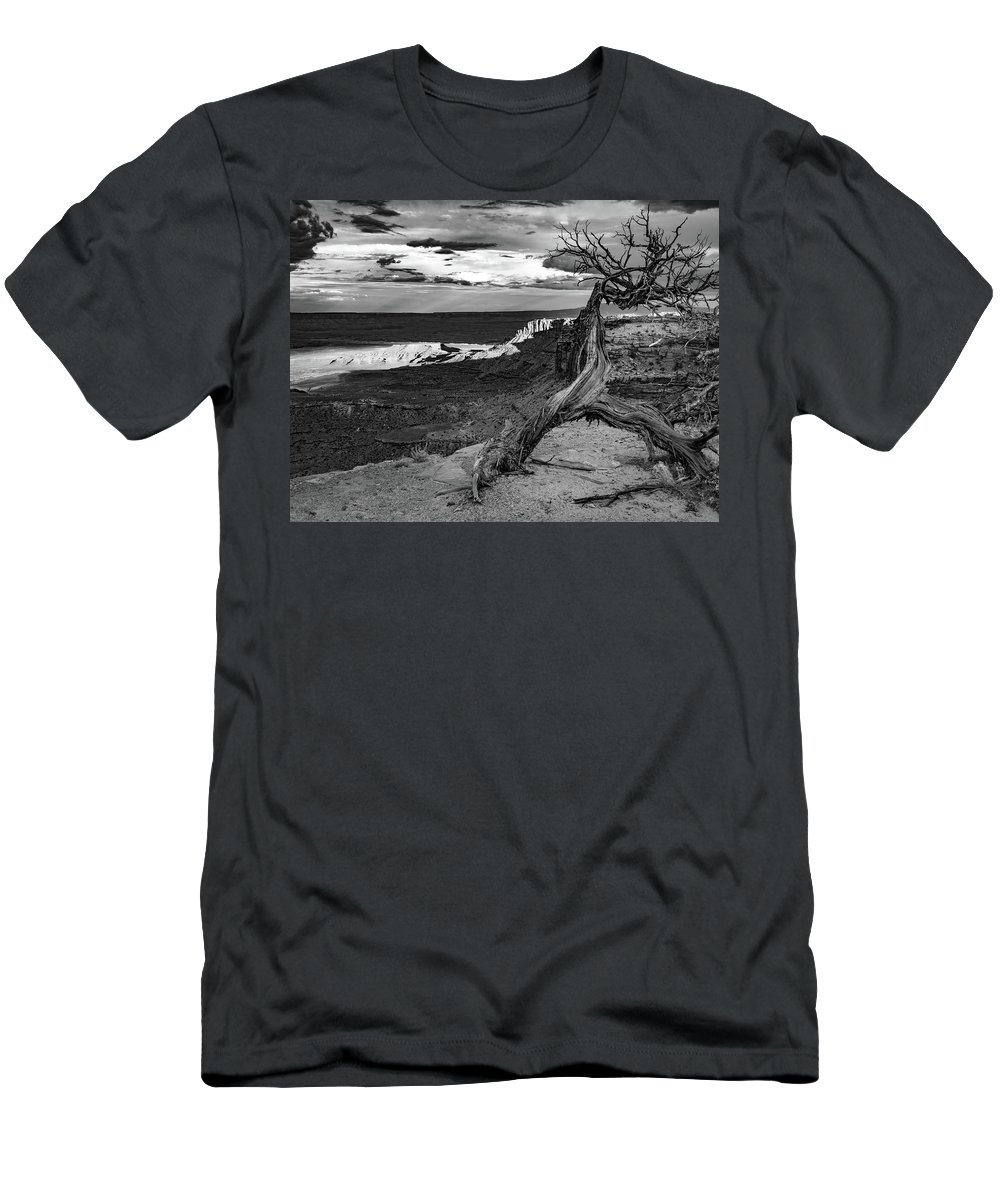 Arches Men's T-Shirt (Athletic Fit) featuring the photograph Shadowlands by Aaron Geraud