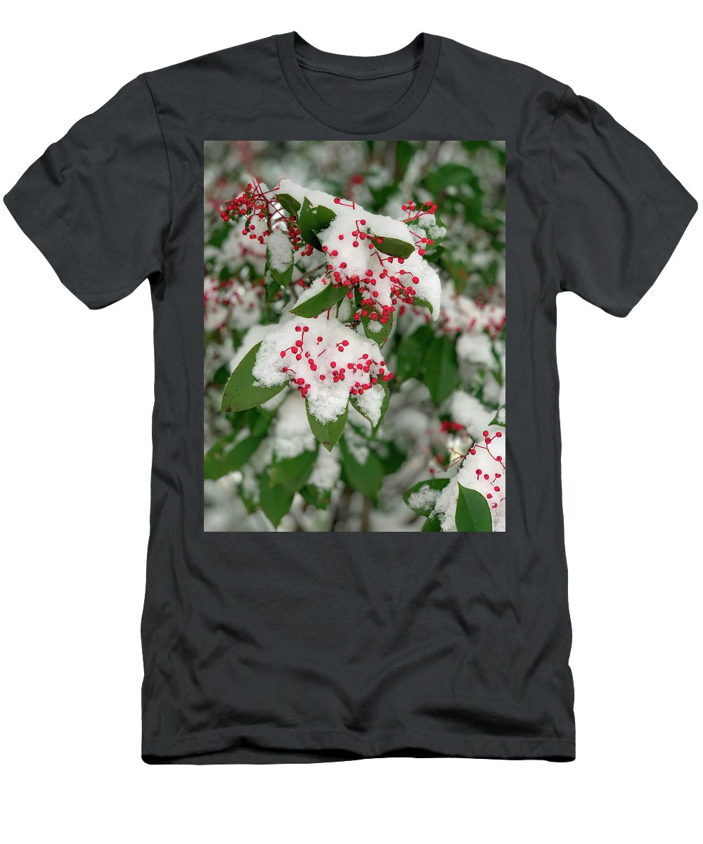 Winter Men's T-Shirt (Athletic Fit) featuring the photograph Snow Covered Winter Berries by Lora J Wilson