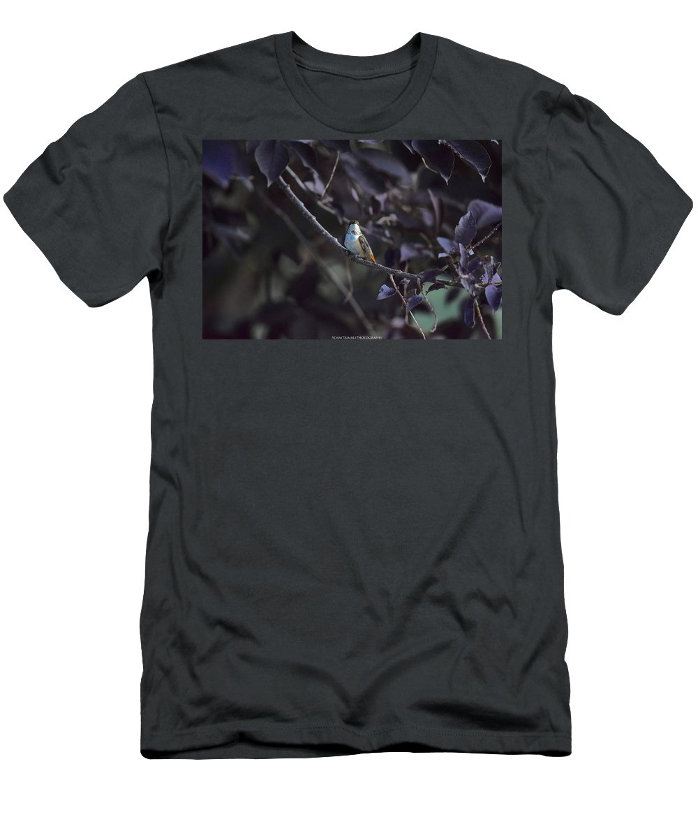 Hummingbird Men's T-Shirt (Athletic Fit) featuring the photograph Hummingbird by Adam Trimble