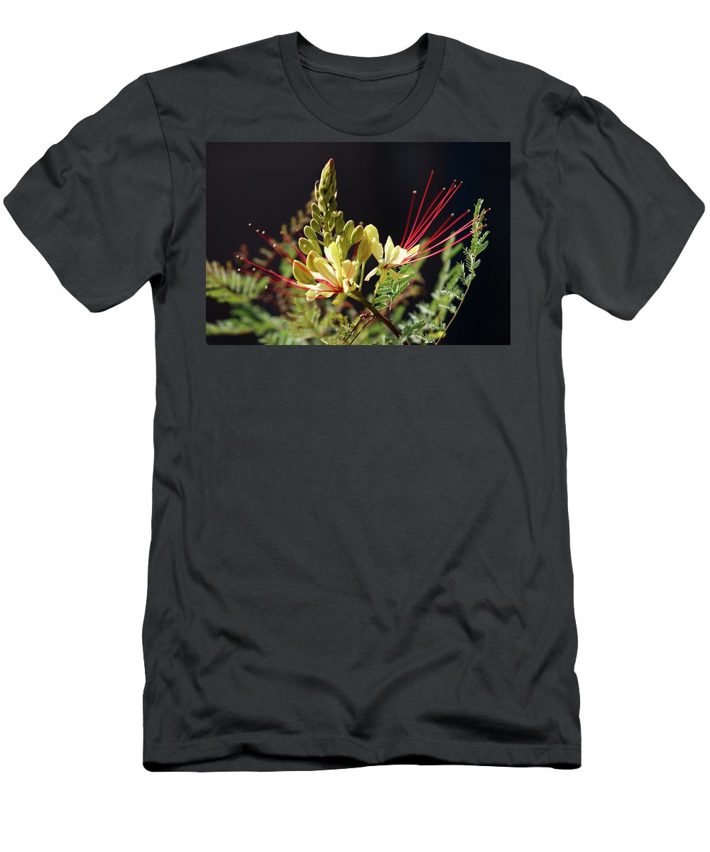 Arizona Men's T-Shirt (Athletic Fit) featuring the photograph Sunlit Yellow Bird Of Paradise by Rolf Jacobson